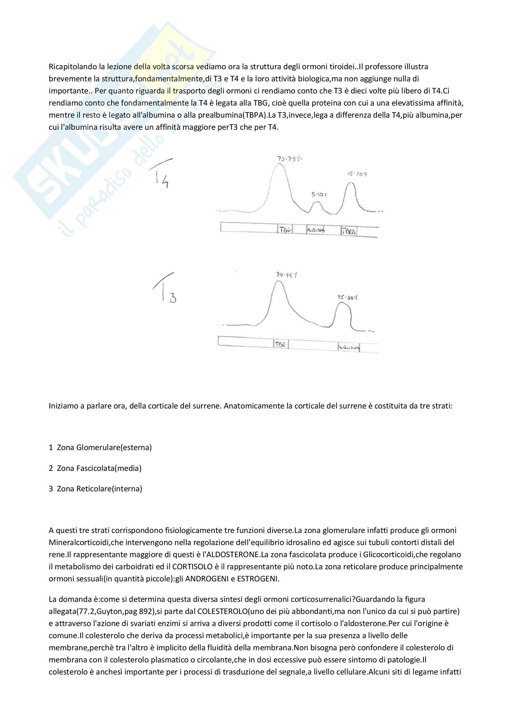 Fisiologia e biofisica - glicocorticoidi