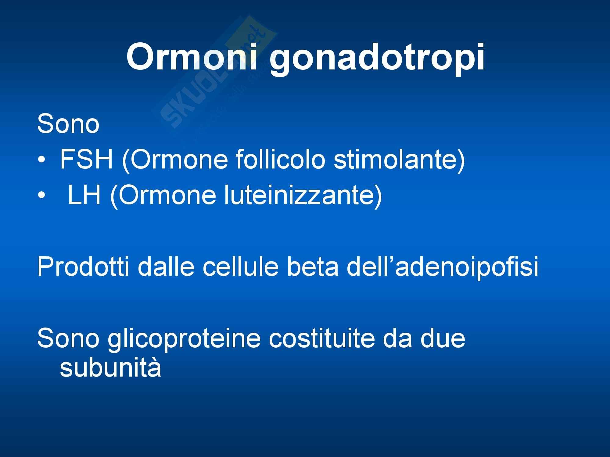 Endocrinologia - LH e FSH