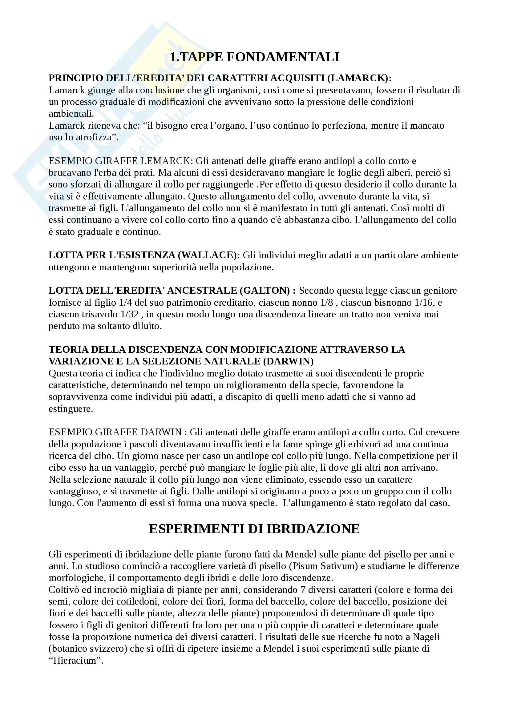 Riassunto esame Genetica, prof. Licciardello