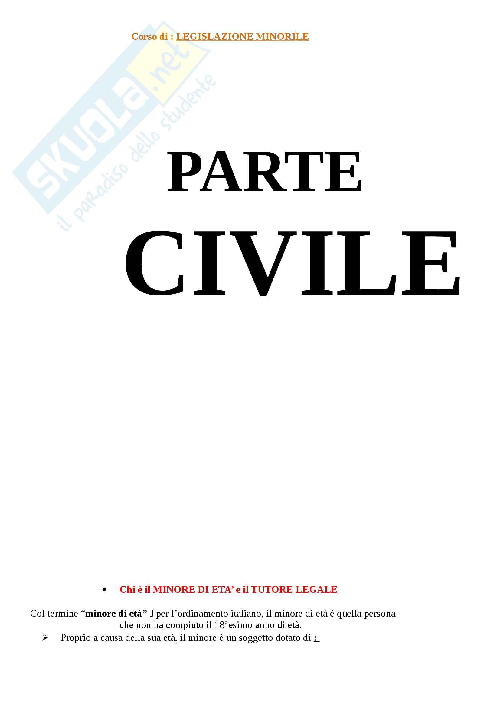 """Riassunto esame Legislazione Minorile, Prof.ssa Bares, Libro consigliato """"Manuale di diritto minorile"""", A.C. Moro"""