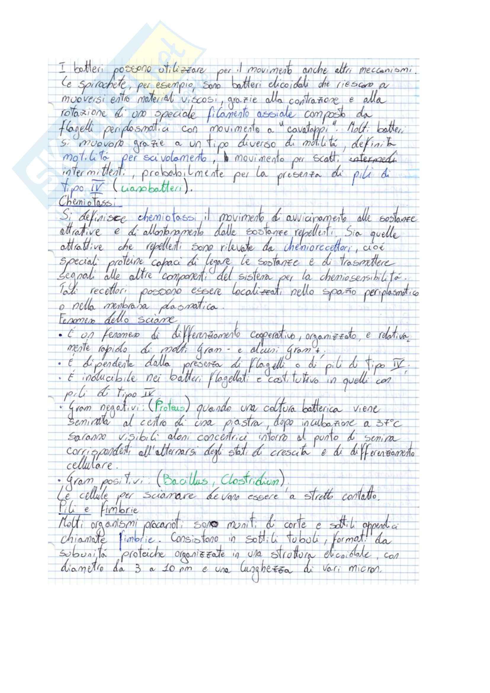 Microbiologia Pag. 26
