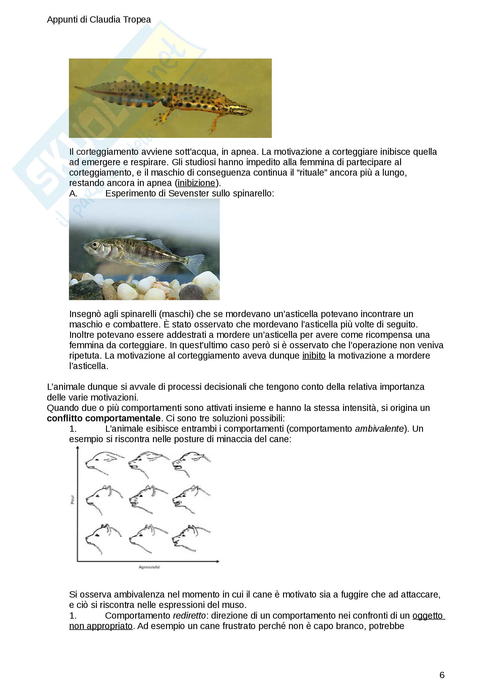 Appunti di Etologia - prof. Luschi Pag. 6