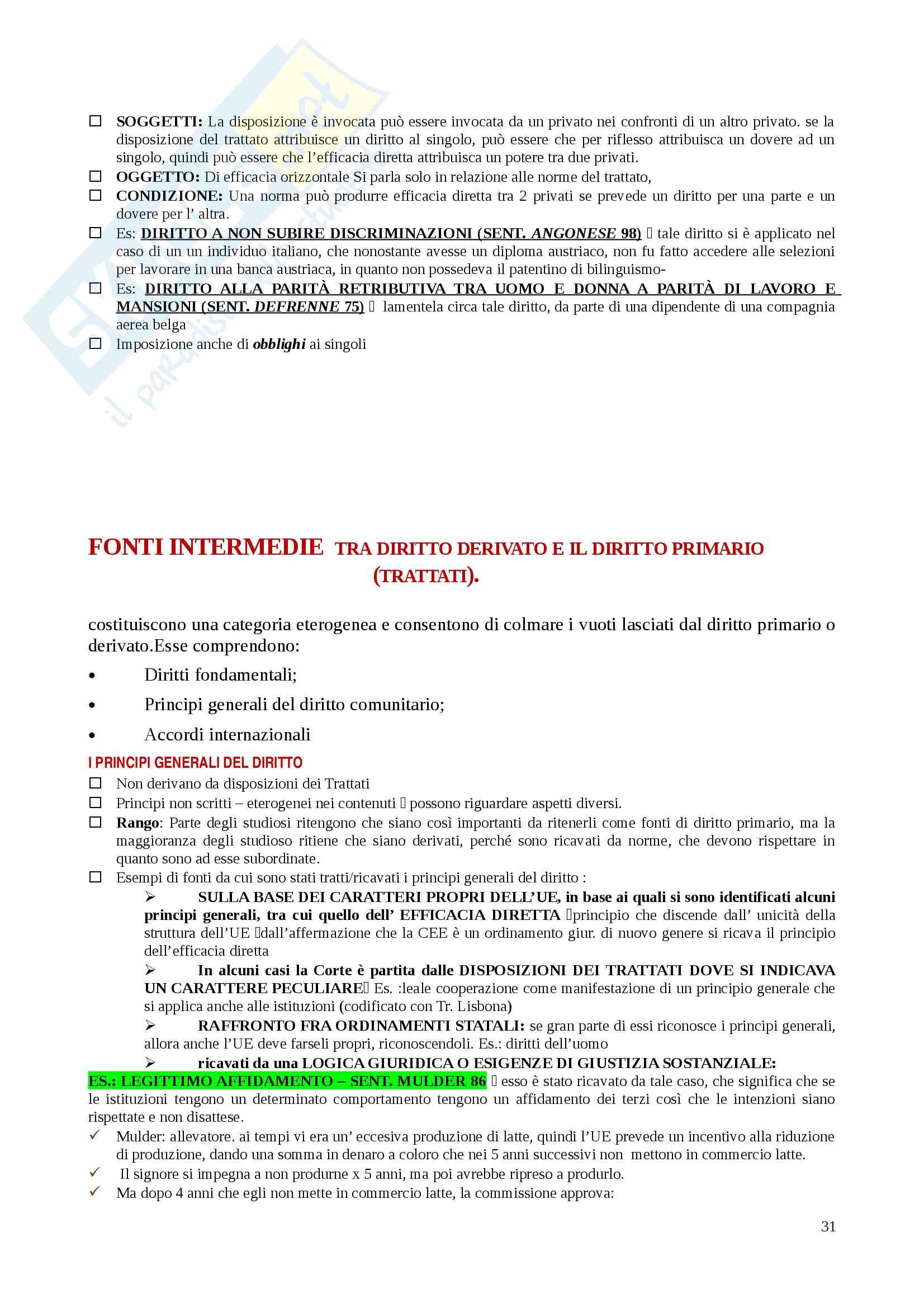 Riassunti Diritto dell'Unione Europea Pag. 31
