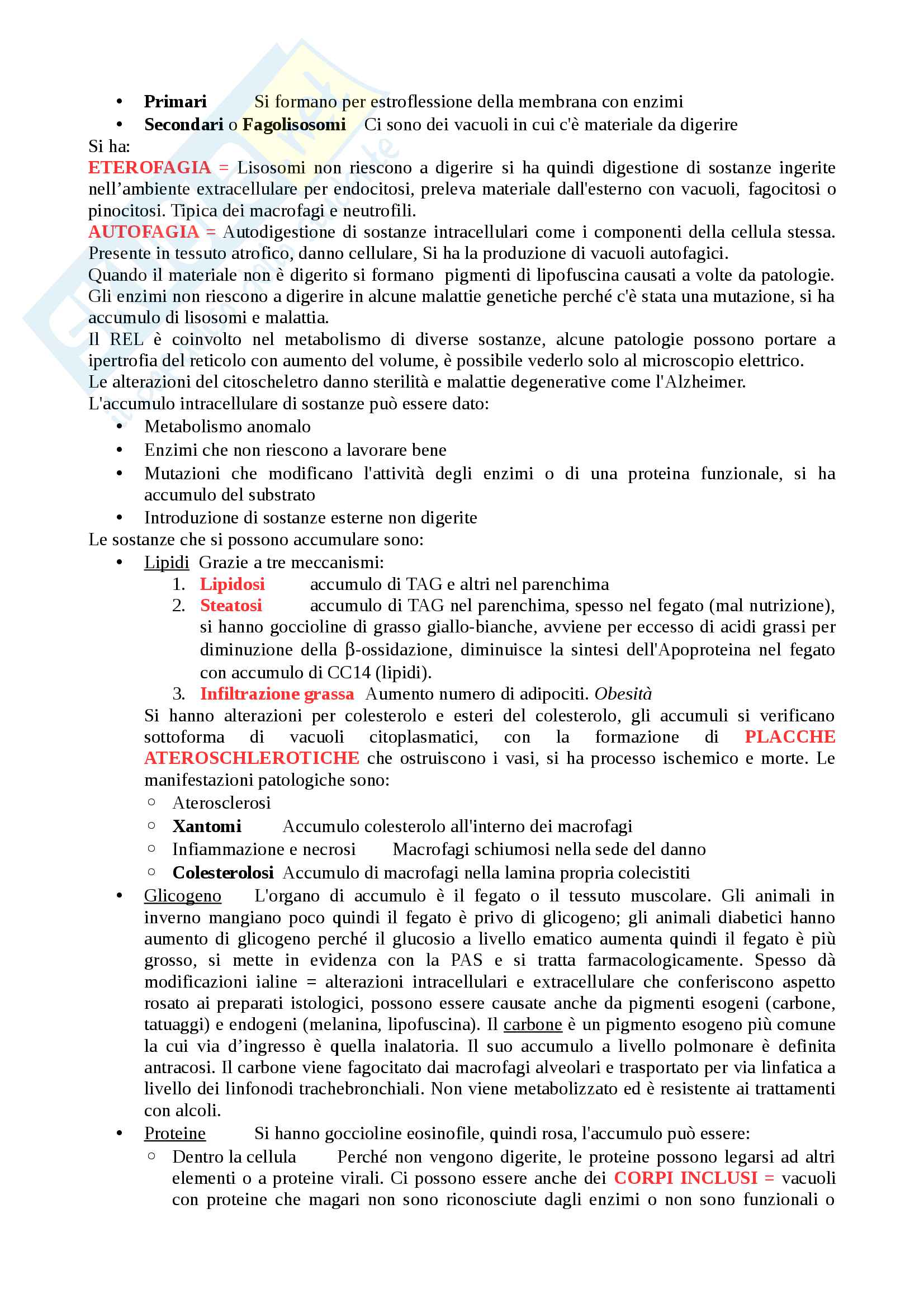 Patologia generale Pag. 6