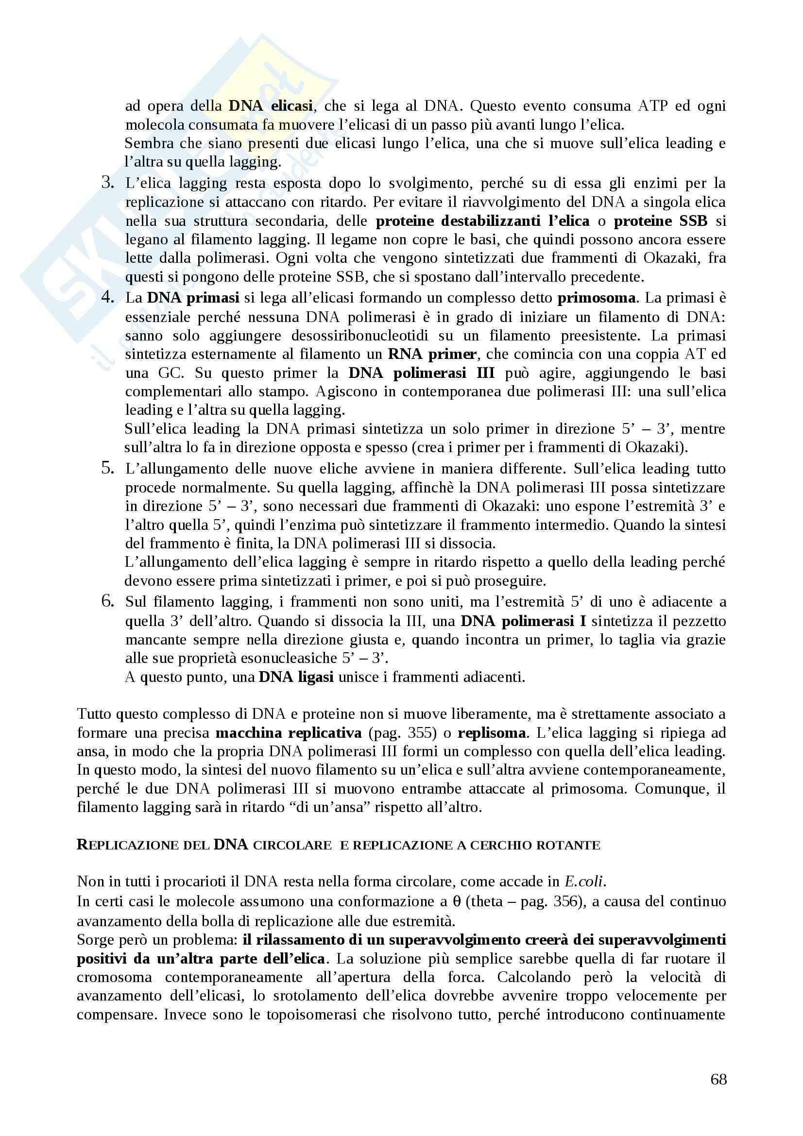 Riassunto esame Genetica, prof. Tanzarella, libro consigliato Genetica di Russell Pag. 66
