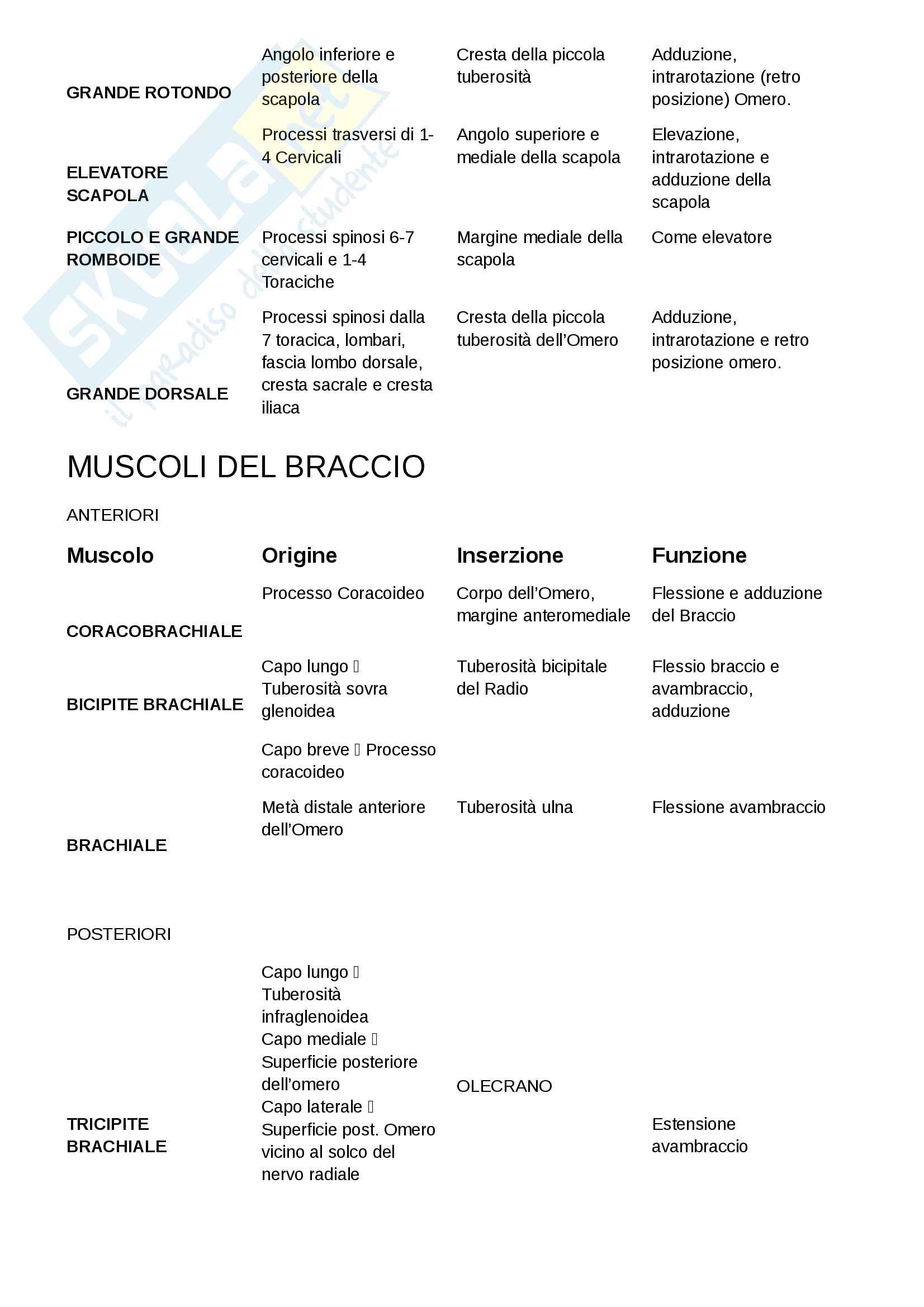Muscoli, Anatomia Pag. 2