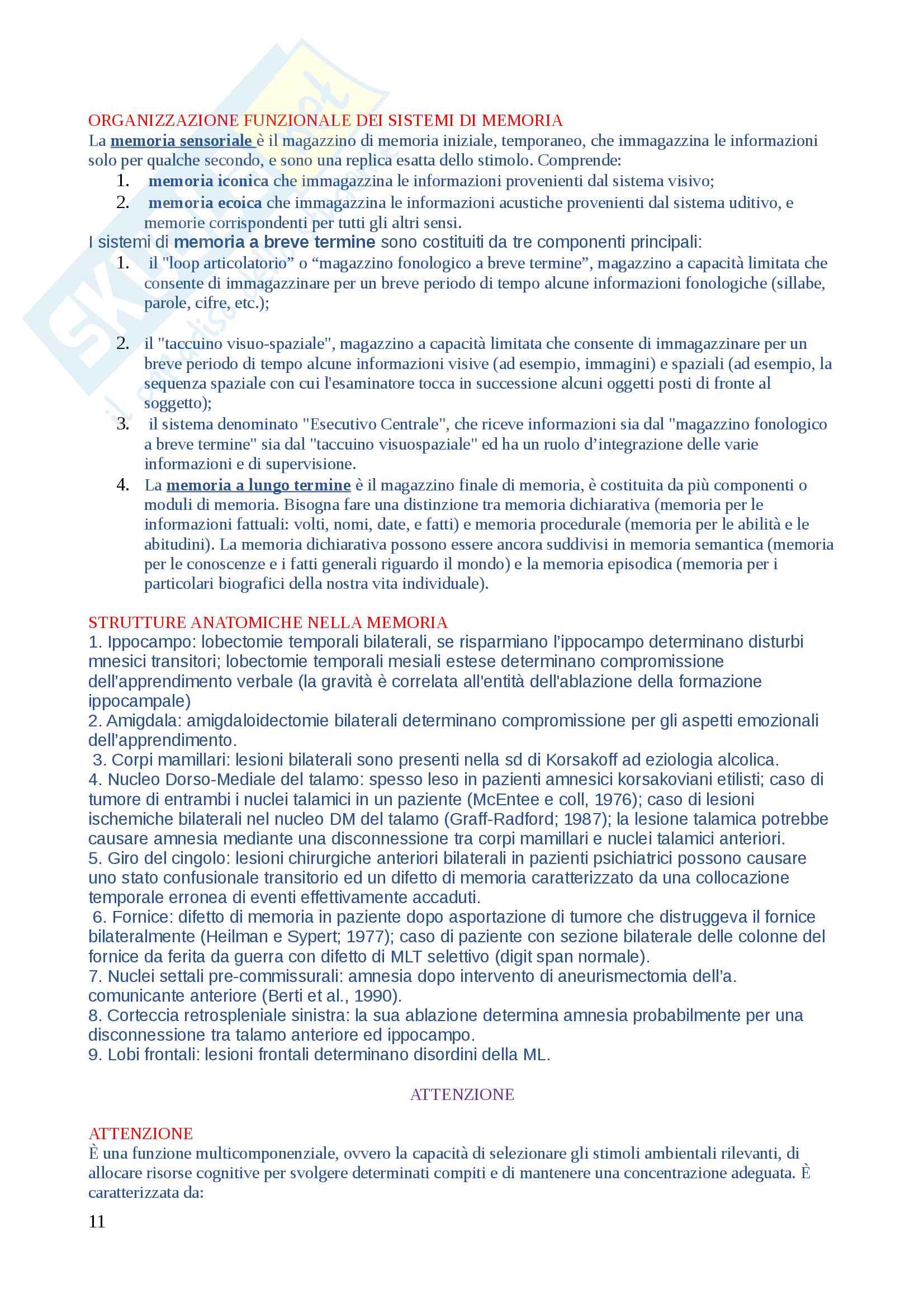 Domande di Neuropsicologia, domande e risposte per esame esaurienti e complete Pag. 11