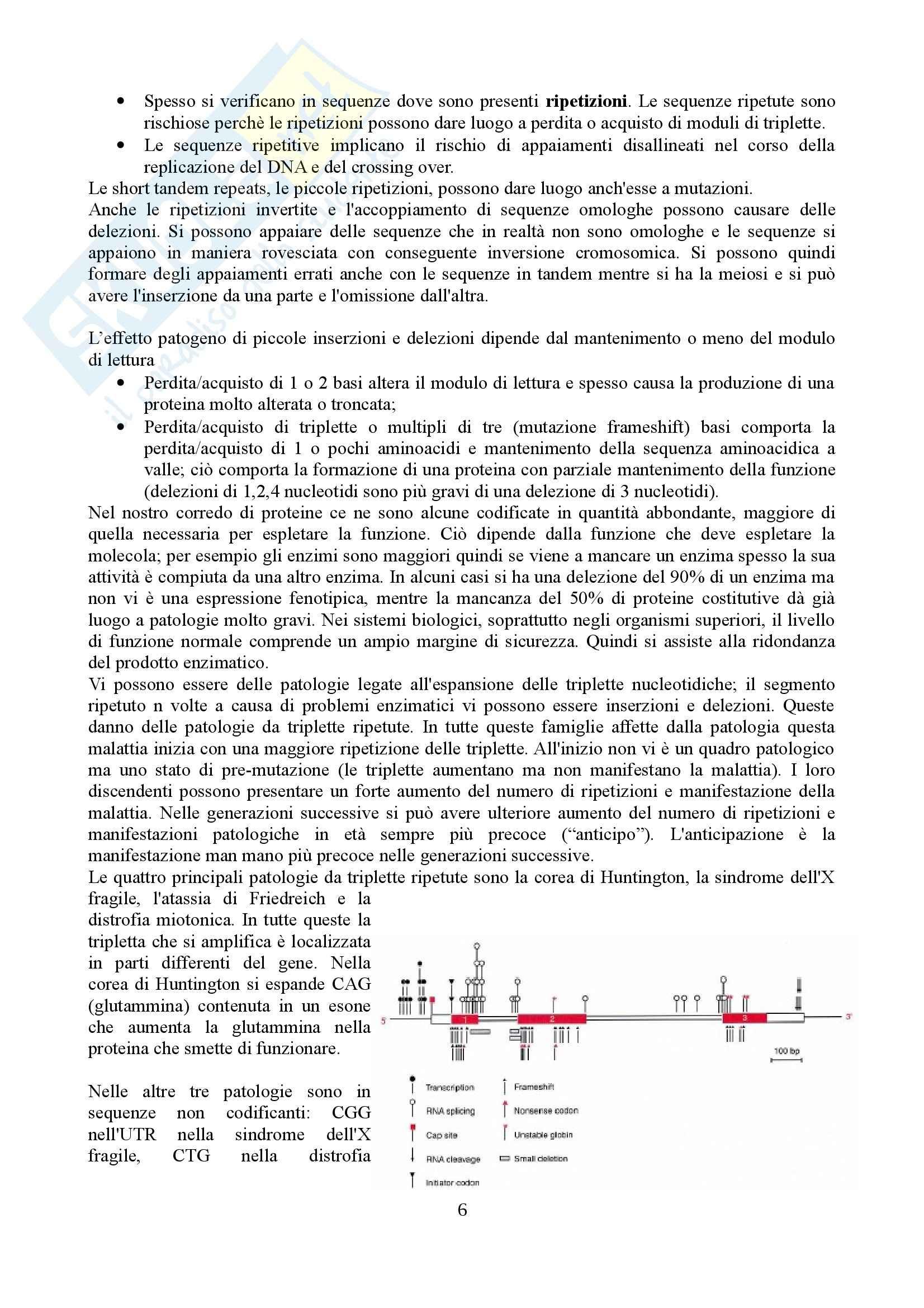 Patologia molecolare - Appunti Pag. 6