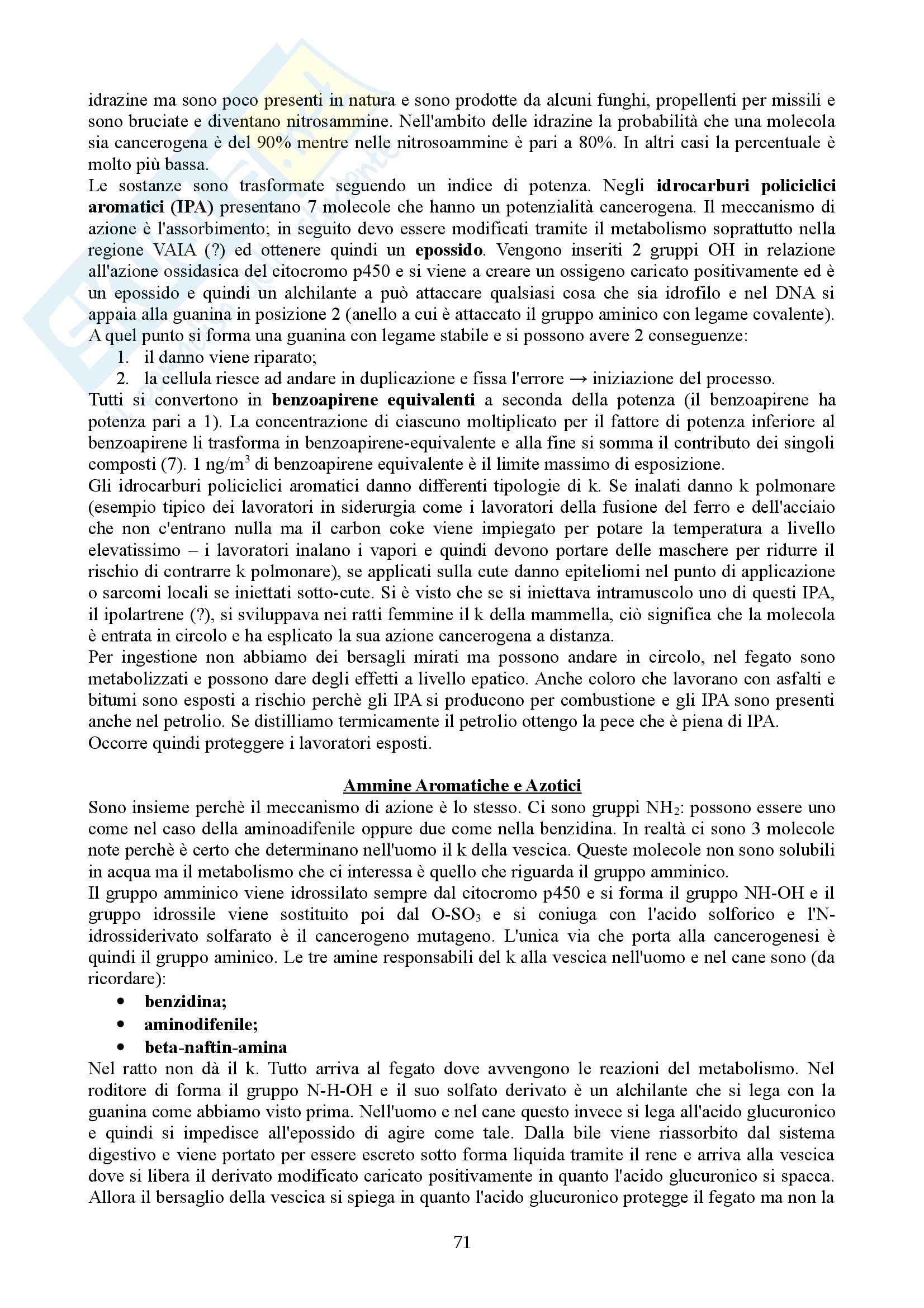 Patologia molecolare - Appunti Pag. 71