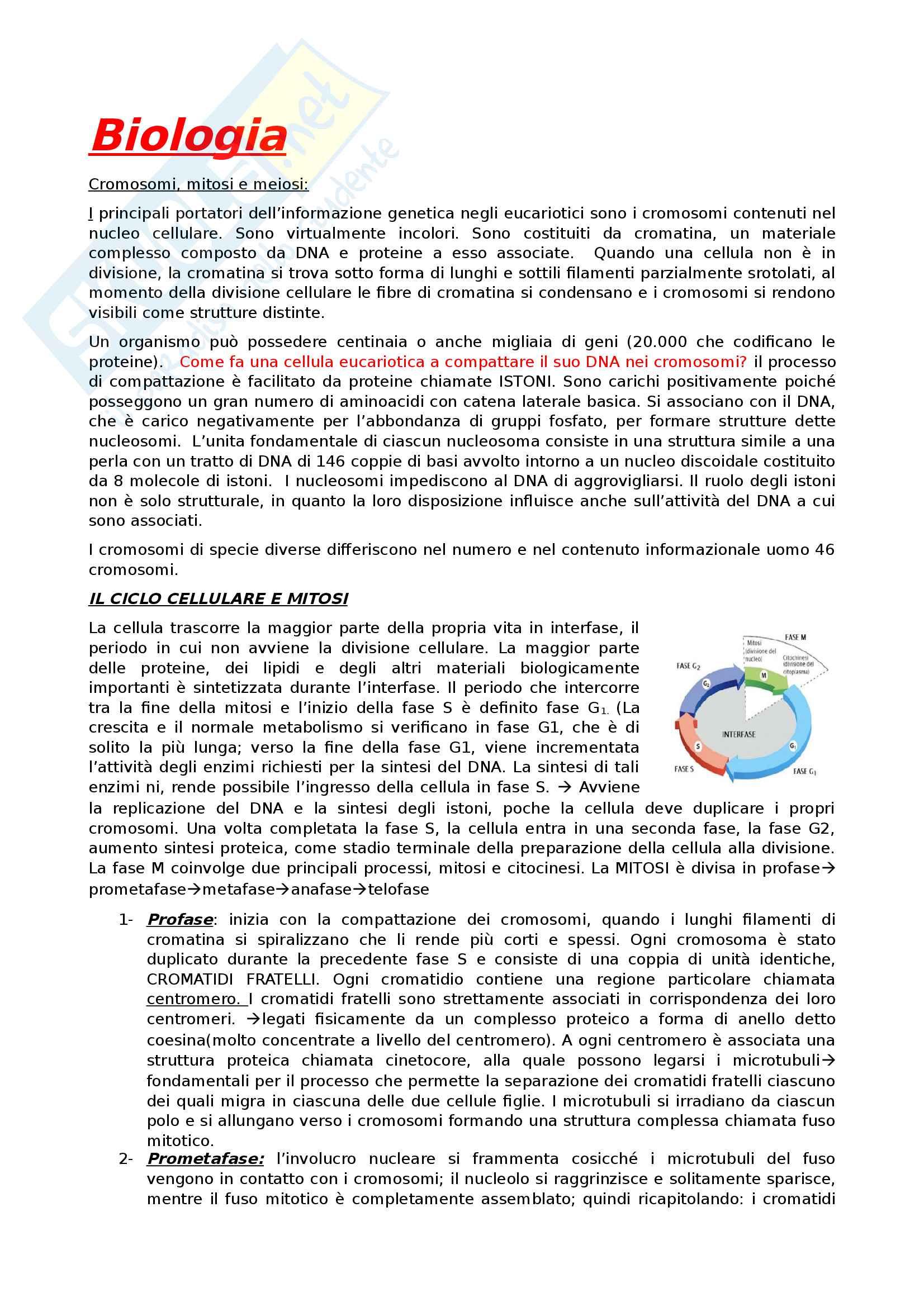 Biologia appunti scritti al pc con foto integrate