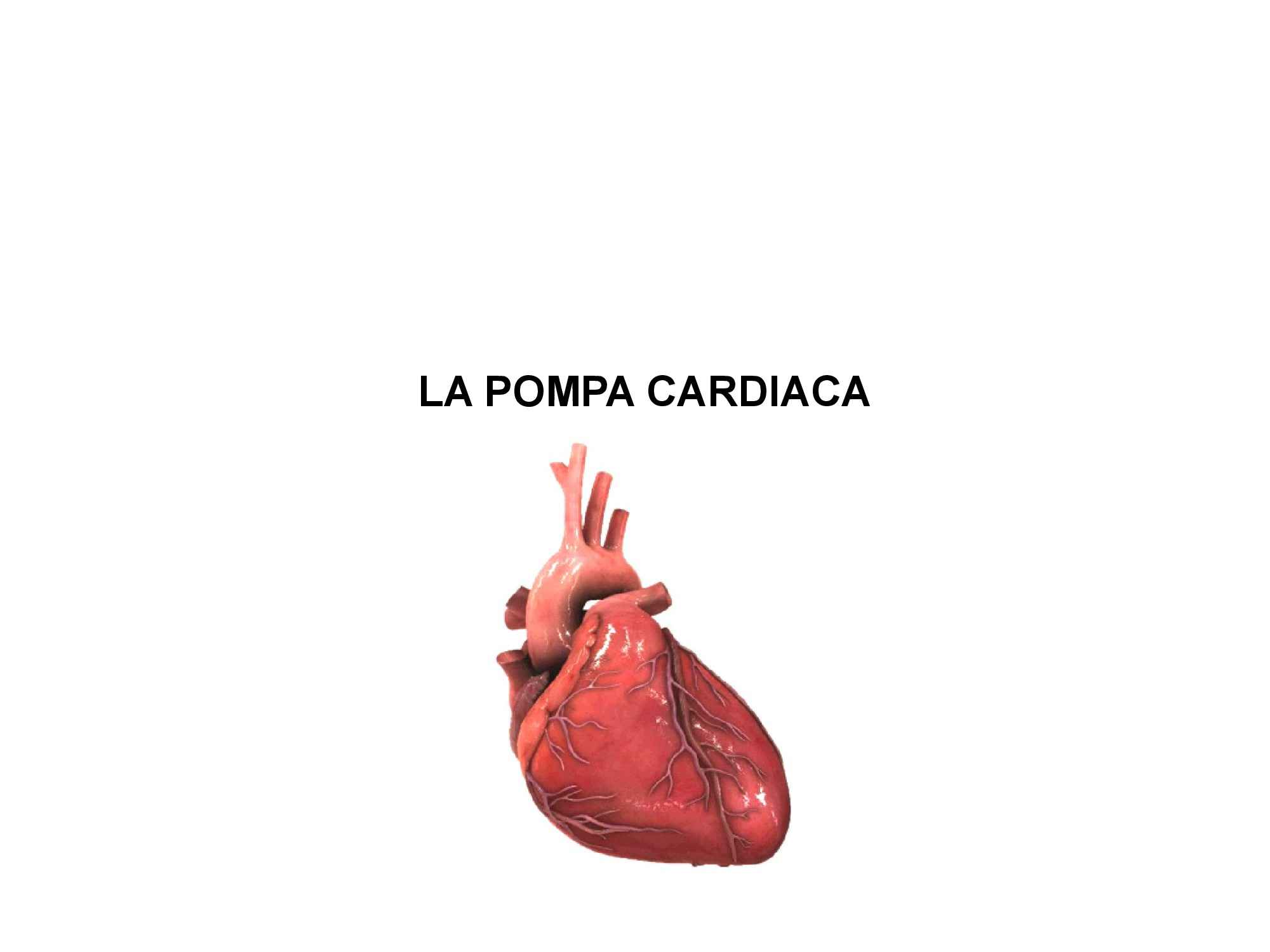 La pompa cardiaca - Fisiologia III