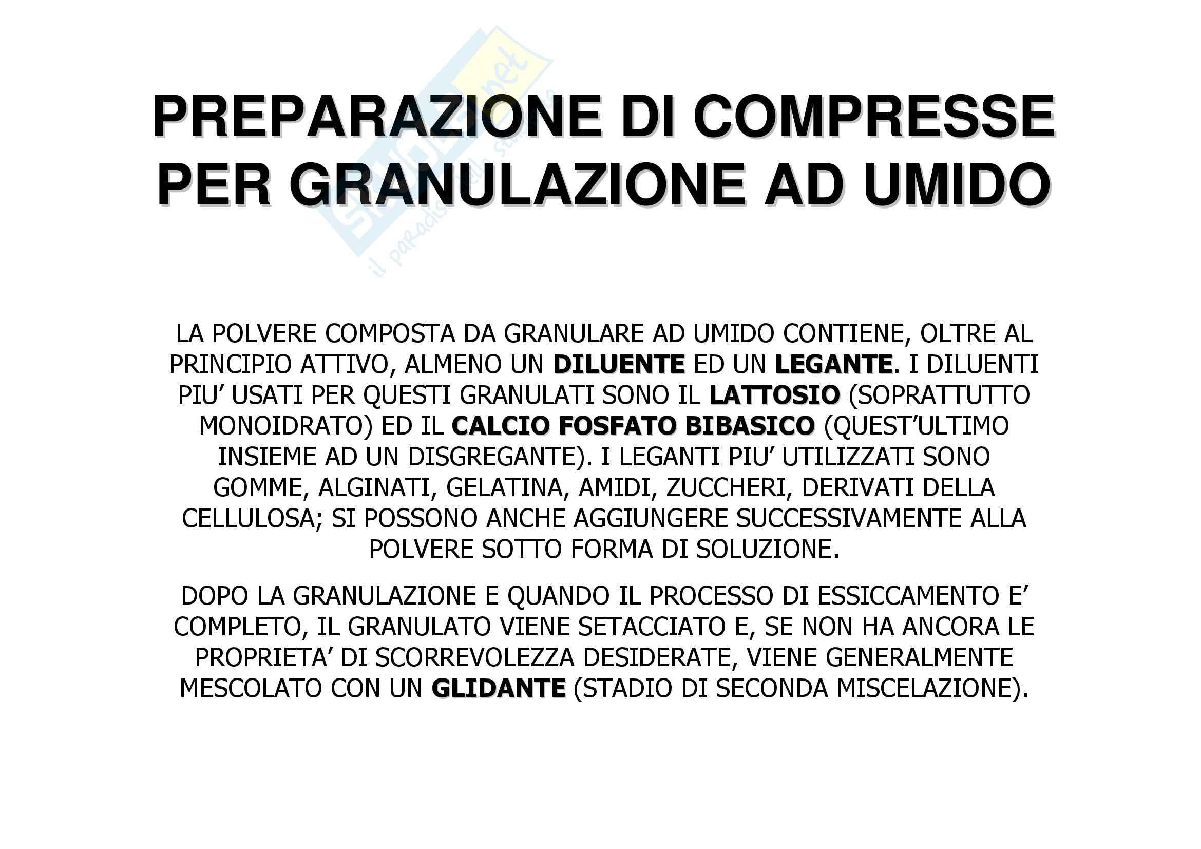 Tecnica farmaceutica - compressione e compresse Pag. 16