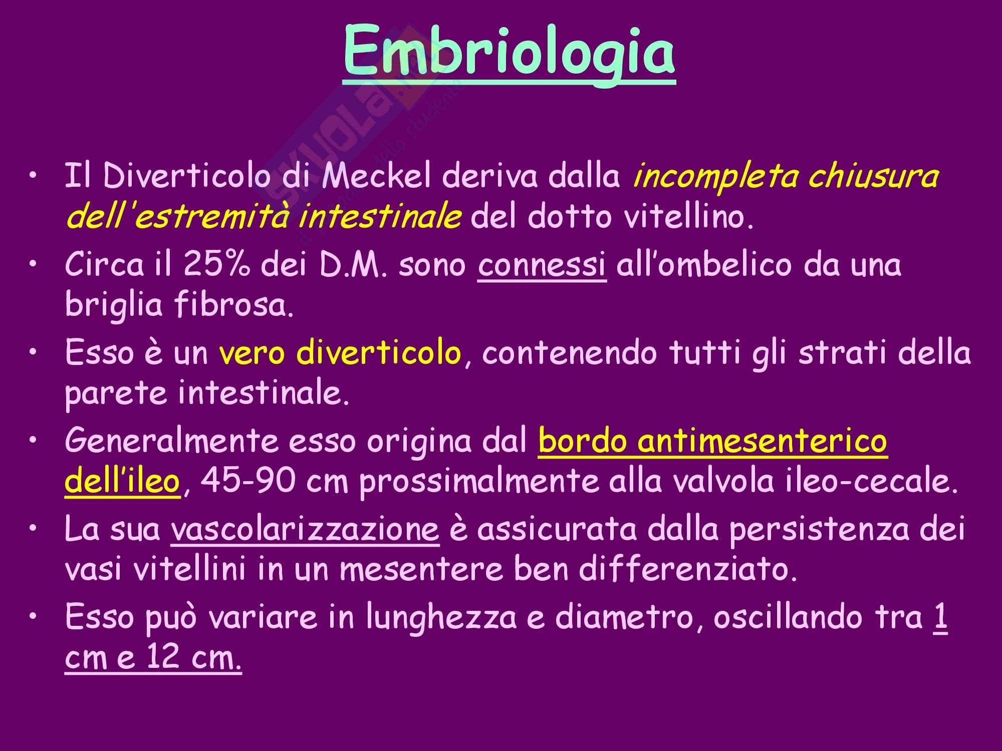 Diverticolo di Meckel Pag. 2
