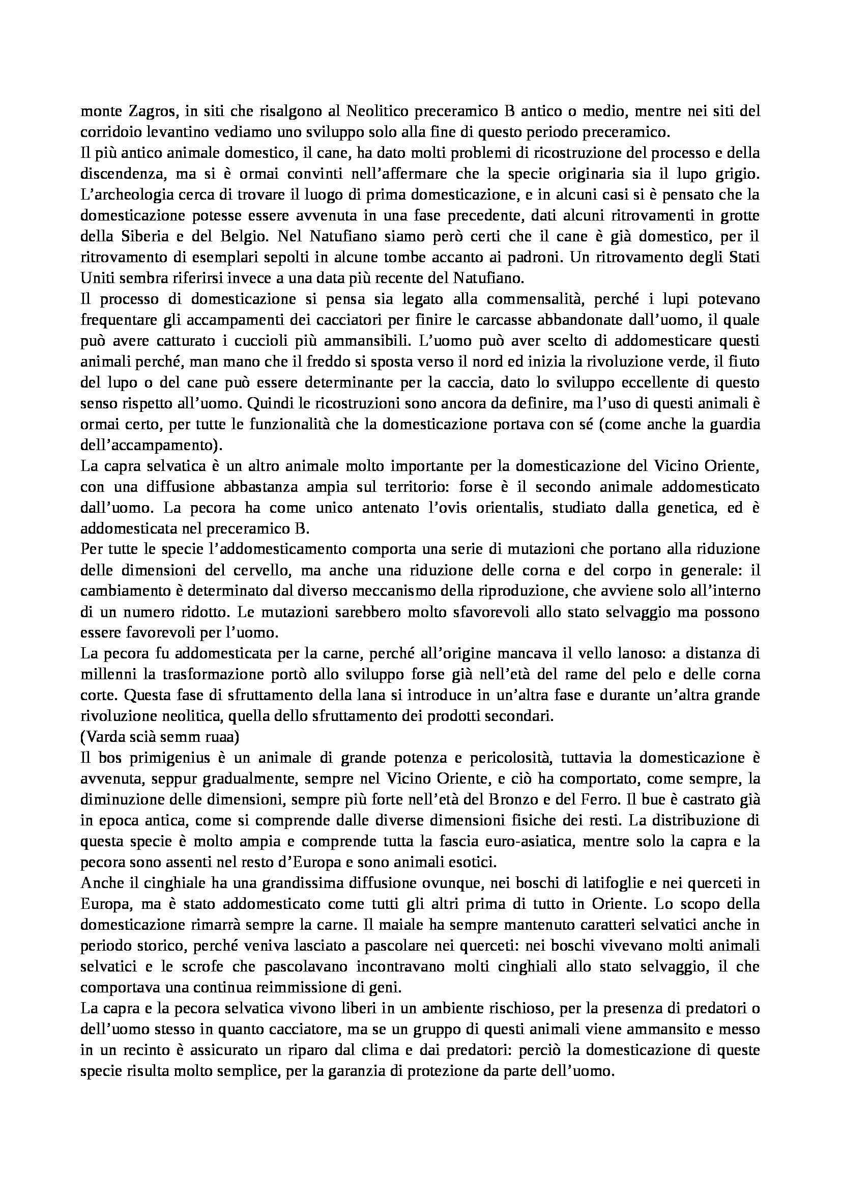Preistoria e protostoria - Appunti Pag. 56