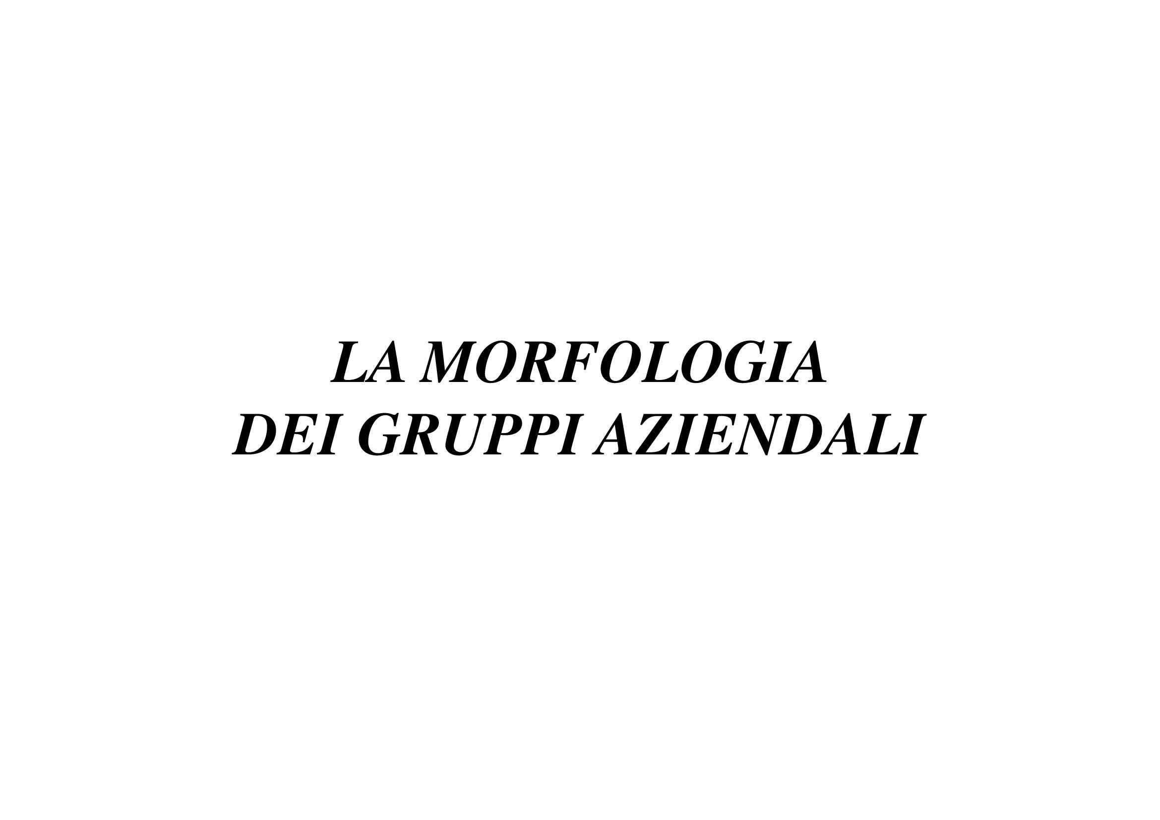 Gruppi aziendali - Morfologia