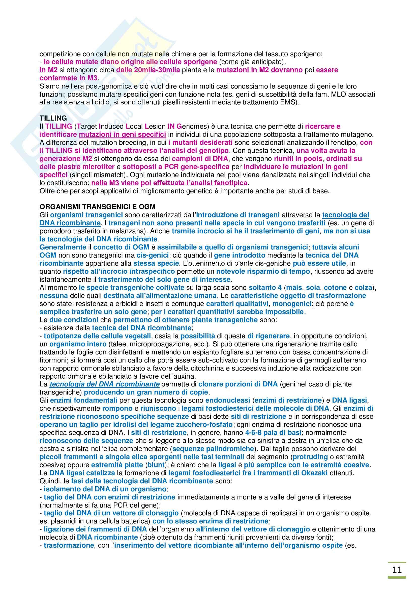 Appunti di Salvaguardia e Valorizzazione della Biodiversità Vegetale prof. Pavan Pag. 11