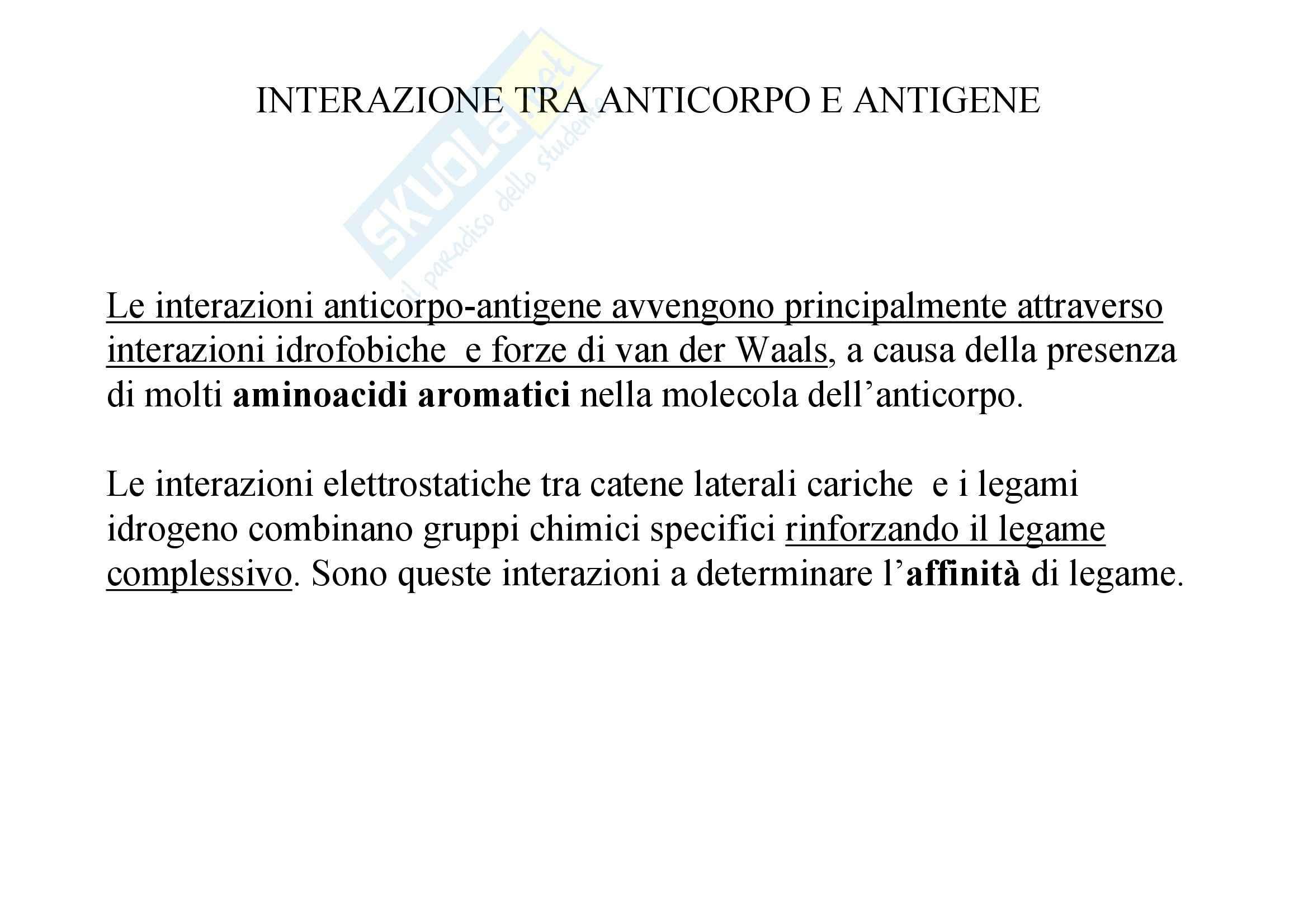 Immunologia - interazione Ag-Ab Pag. 11