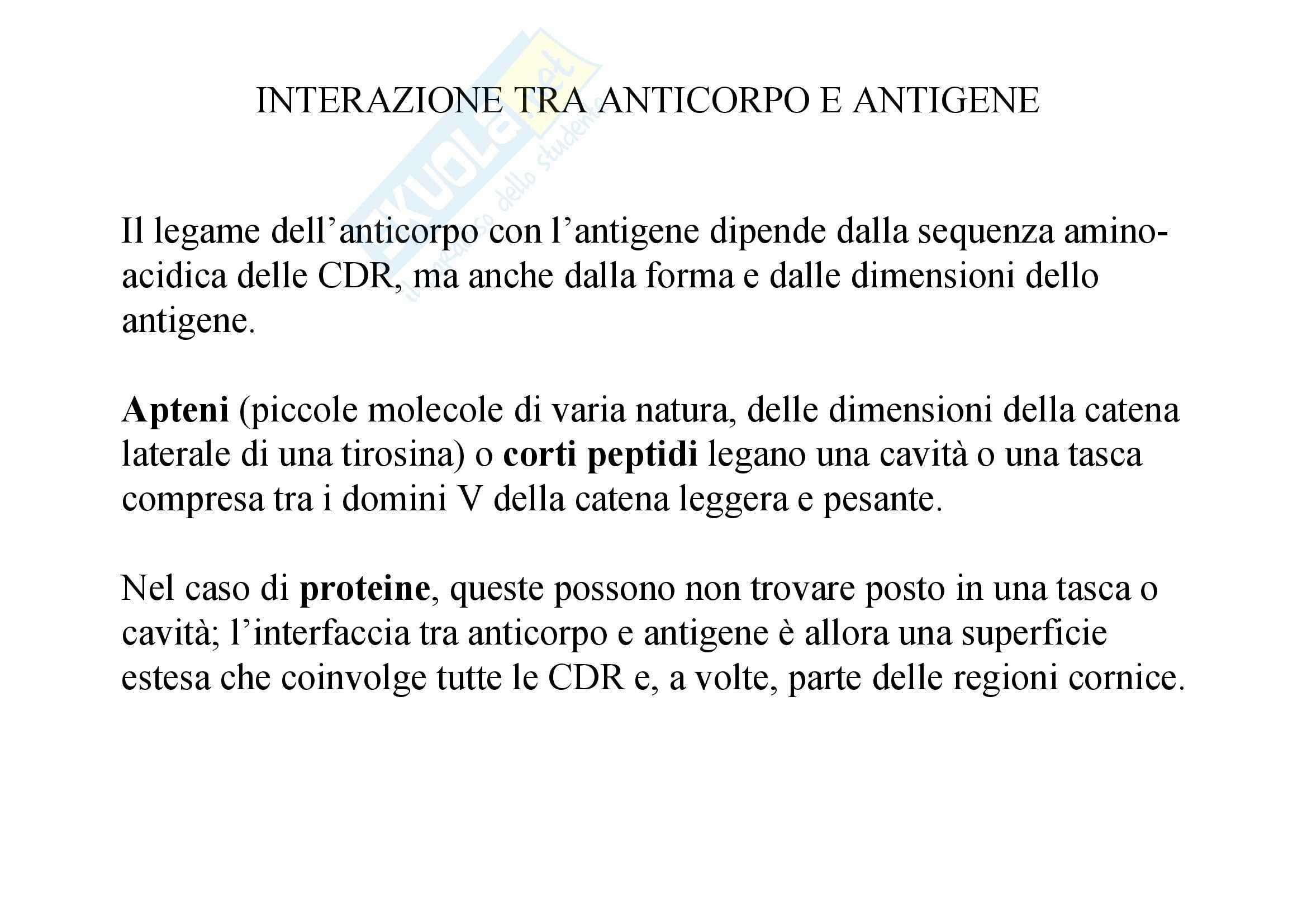 Immunologia - interazione Ag-Ab Pag. 6