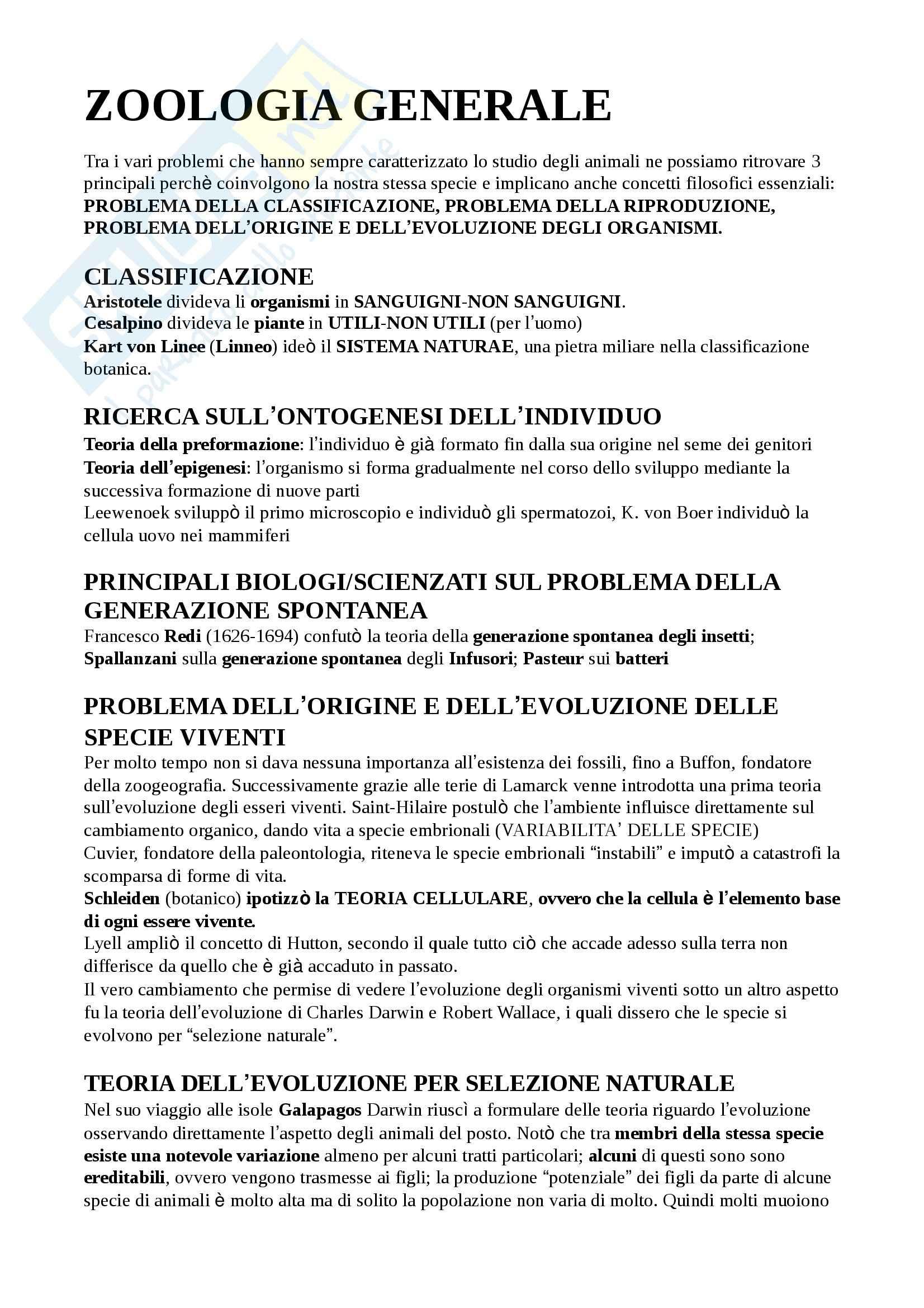 appunto S. Turilazzi Zoologia