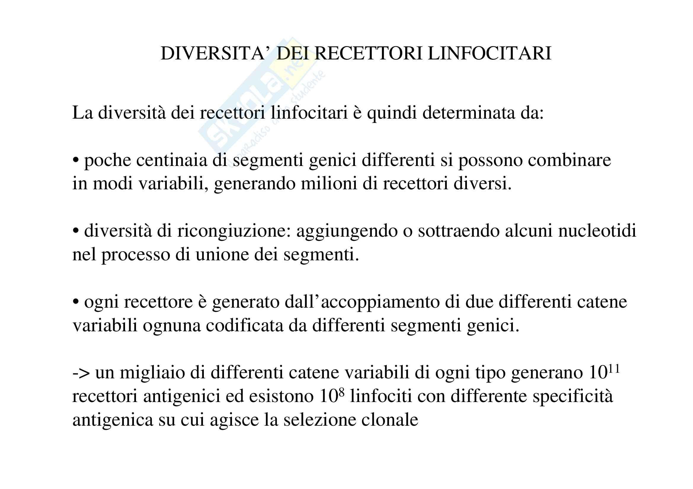 Immunologia - diversità recettori linfocitari