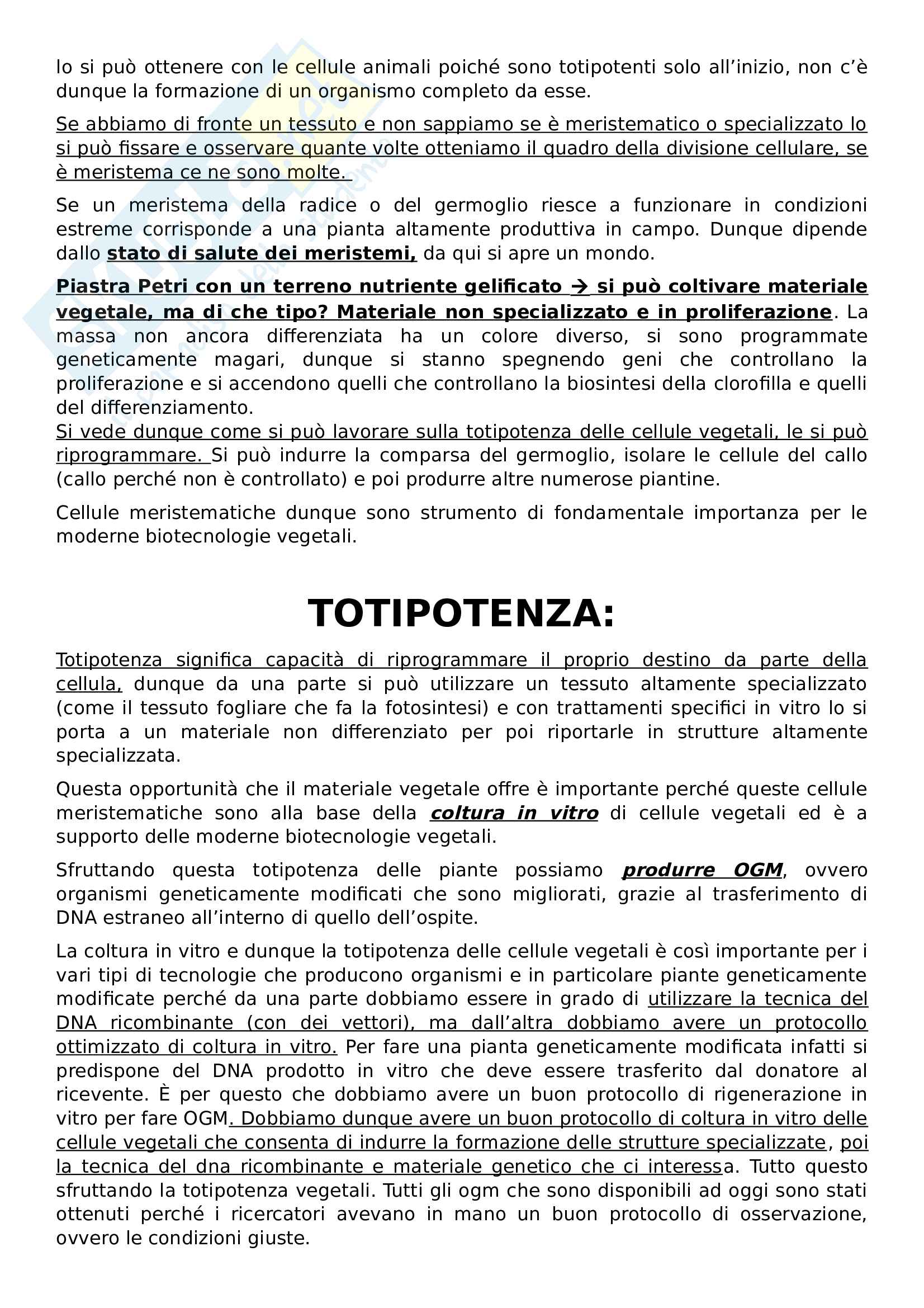 Appunti biologia vegetale Pag. 11