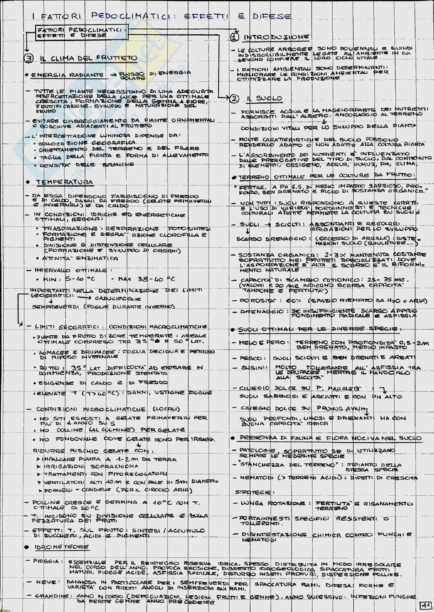 Coltivazione Arboree Pag. 11
