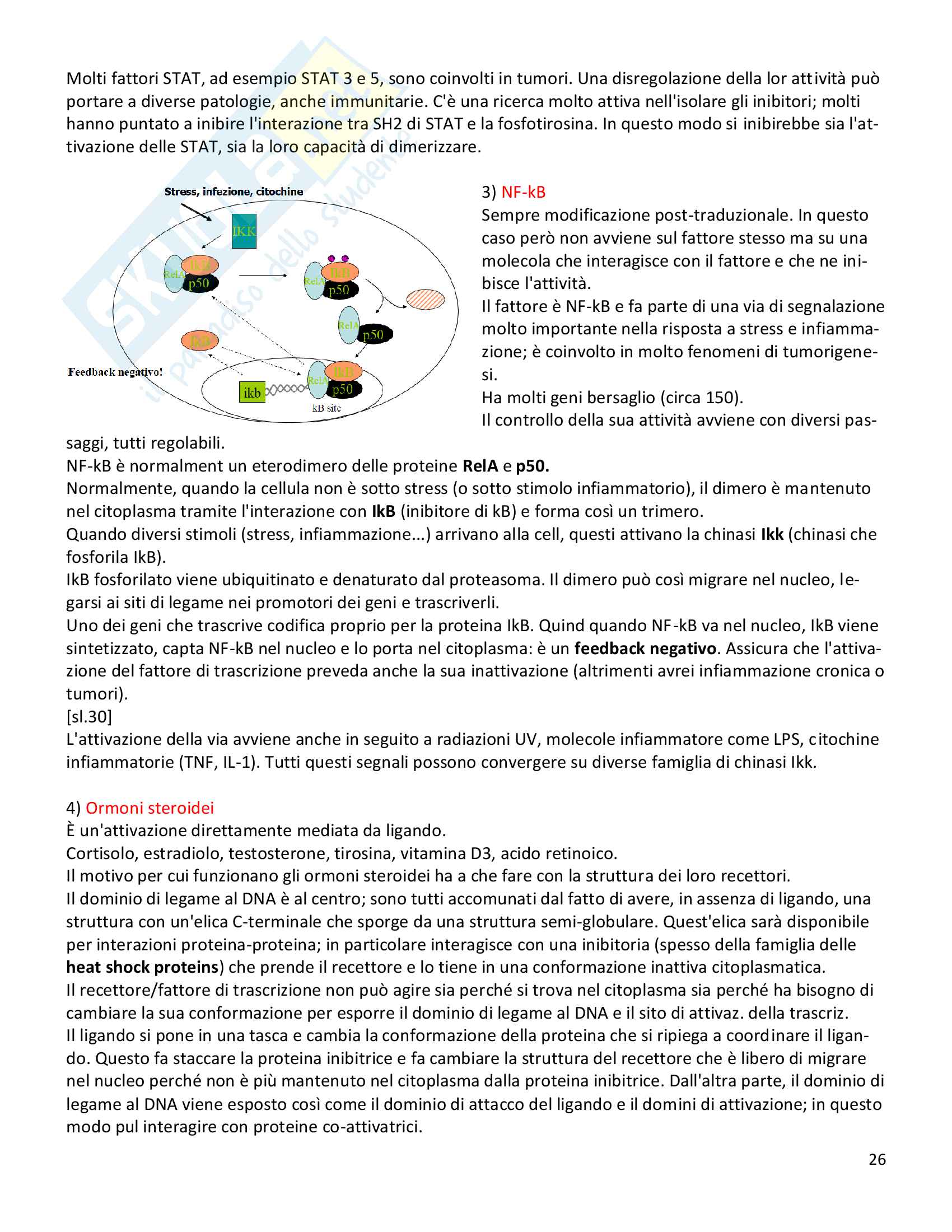 Biologia molecolare prof.ssa Poli Pag. 26