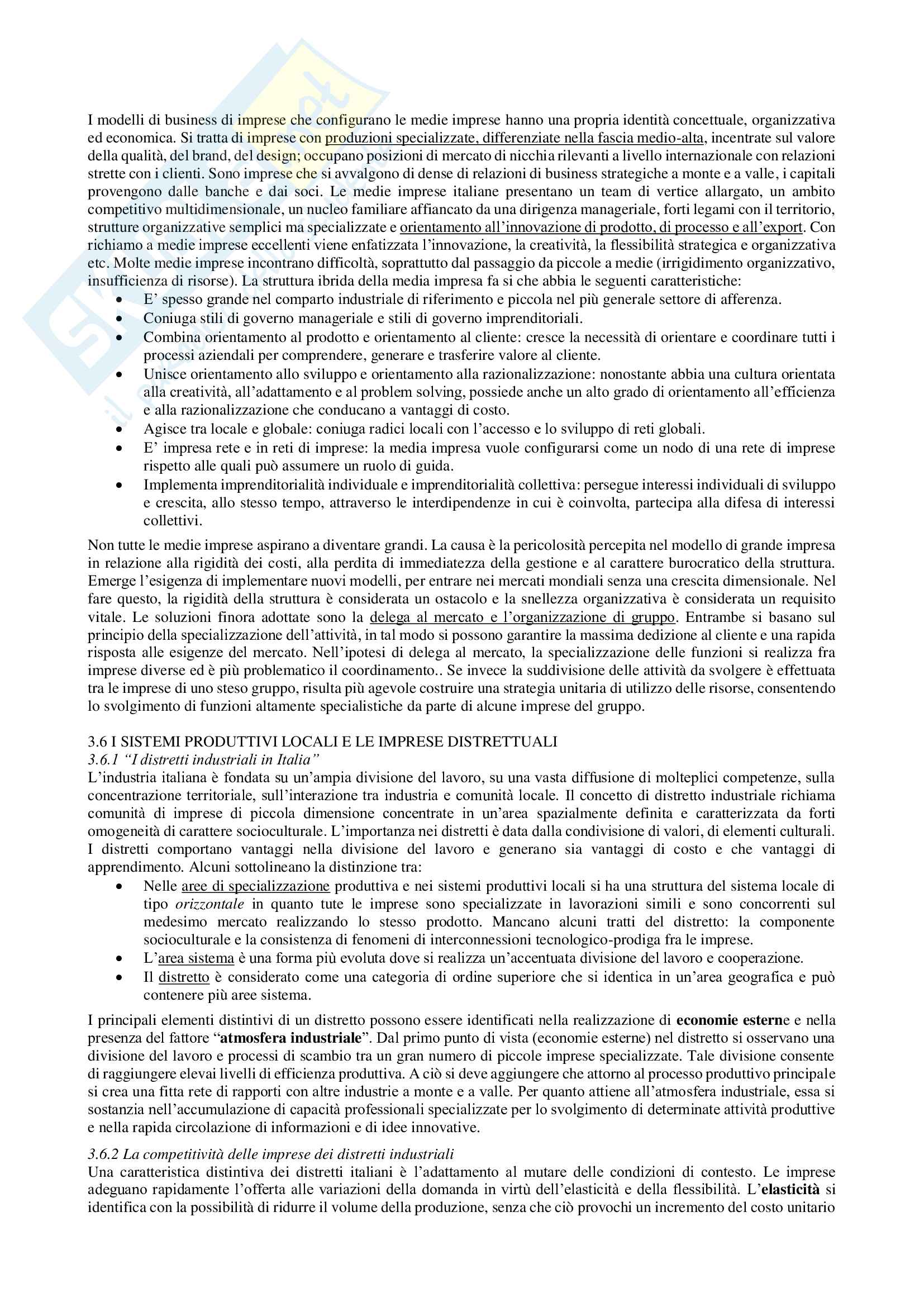 Riassunto esame Economia e management delle imprese, prof. Chiacchierini, libro consigliato Economia e management delle imprese, strategie e strumenti per la competitività e la gestione aziendale,Tunisini, Pencarelli, Ferrucci Pag. 16