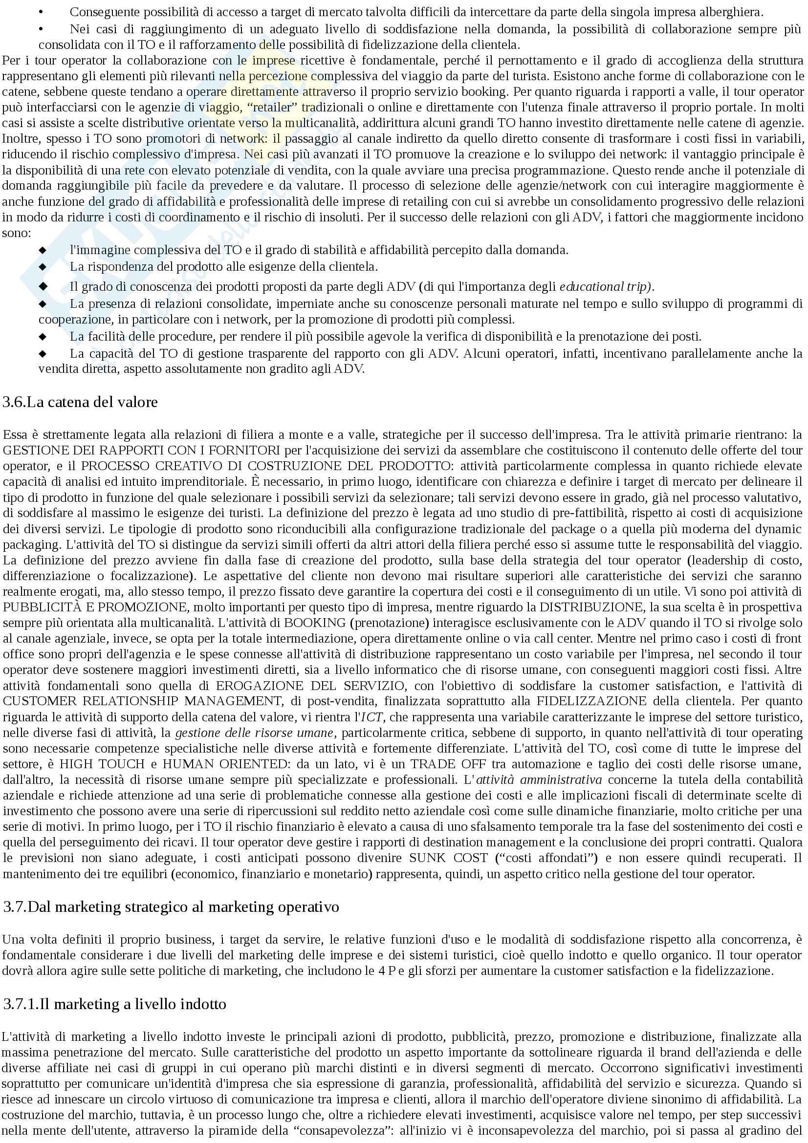 Sintesi marketing e management delle imprese turistiche Pag. 11