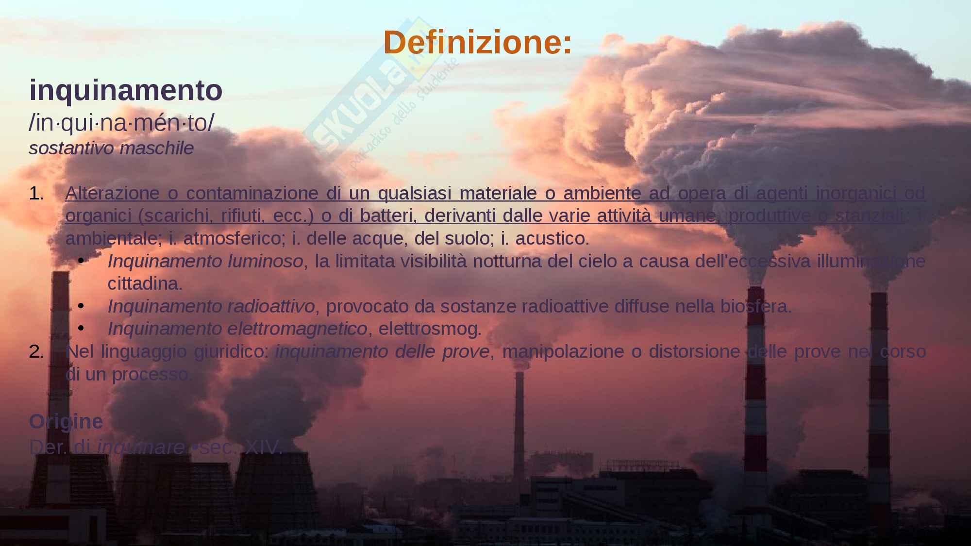 L'inquinamento globale Pag. 2