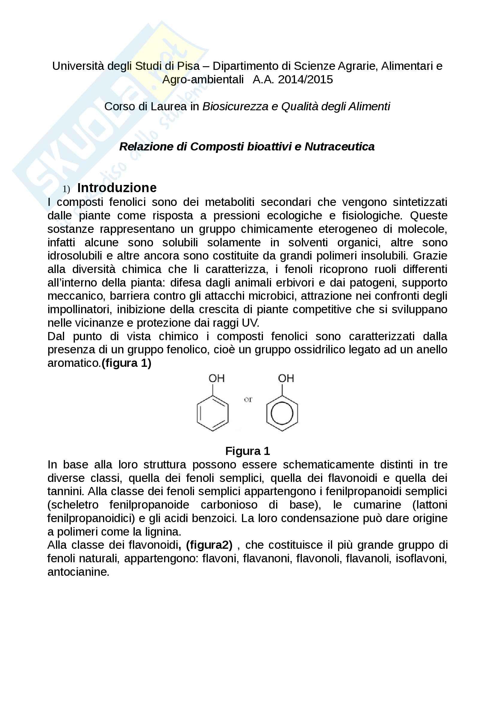 Relazione di Composti bioattivi e Nutraceutica