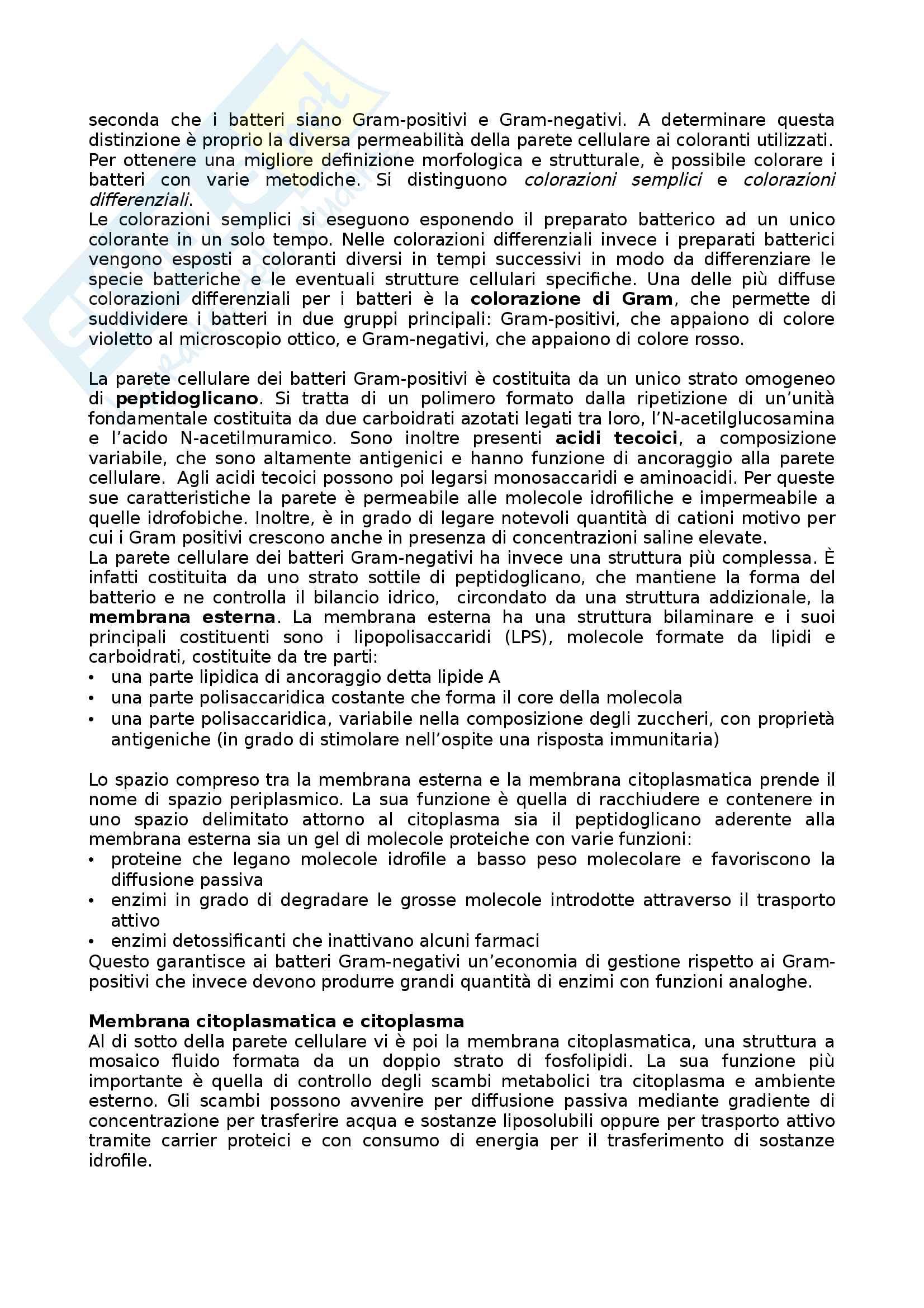 I batteri: cenni generali Pag. 2