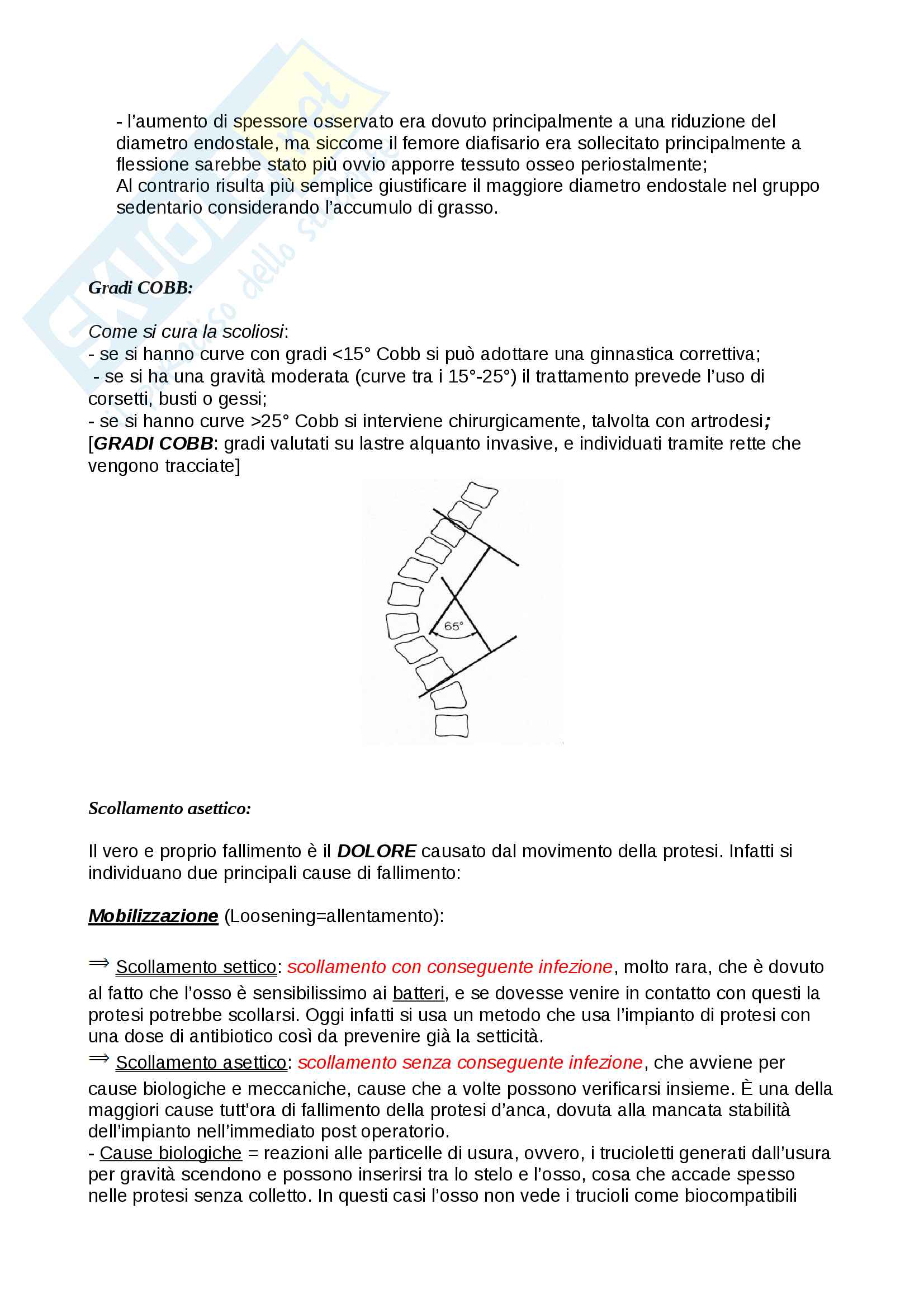 Domande bioingegneria meccanica Pag. 26