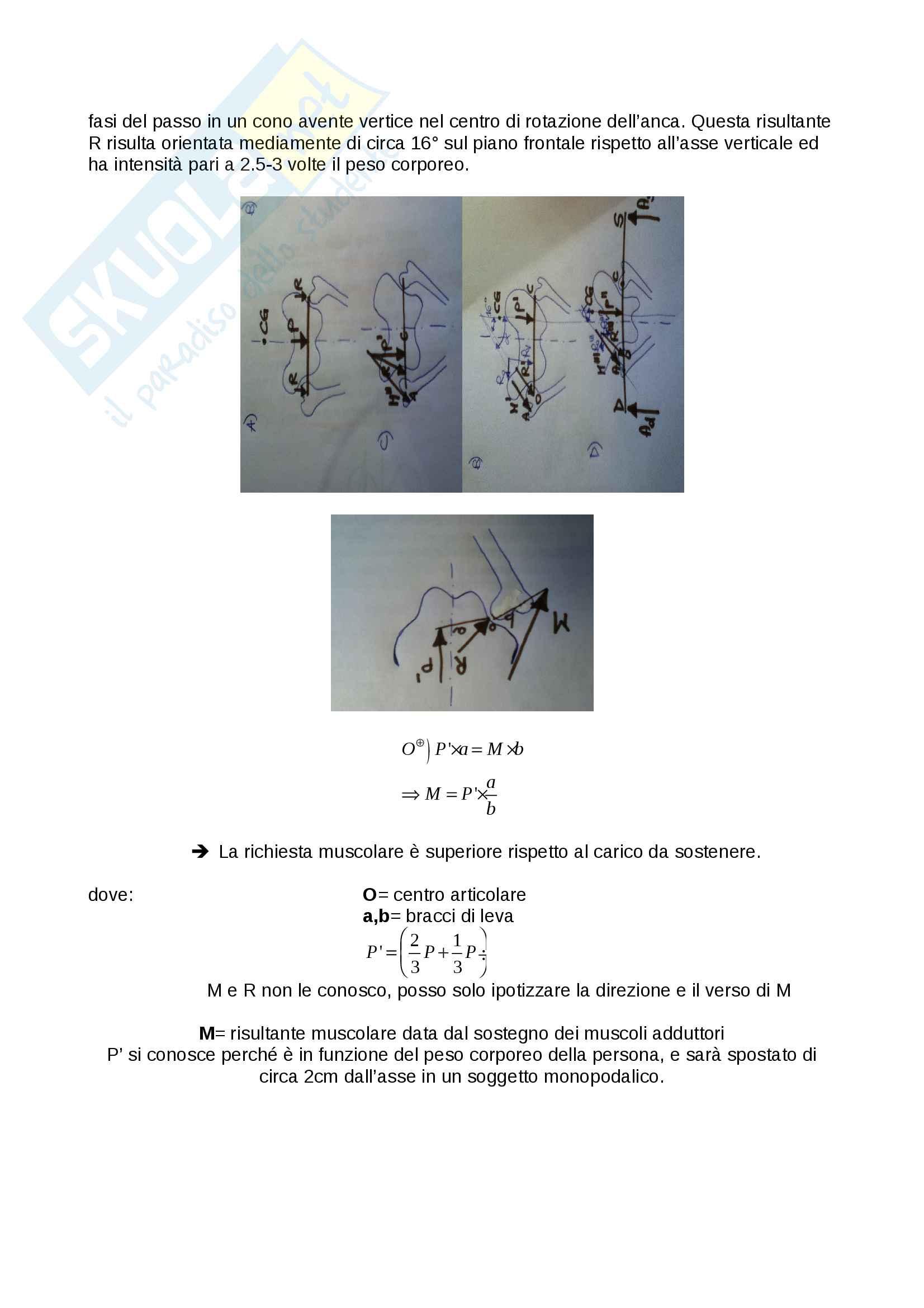 Domande bioingegneria meccanica Pag. 31