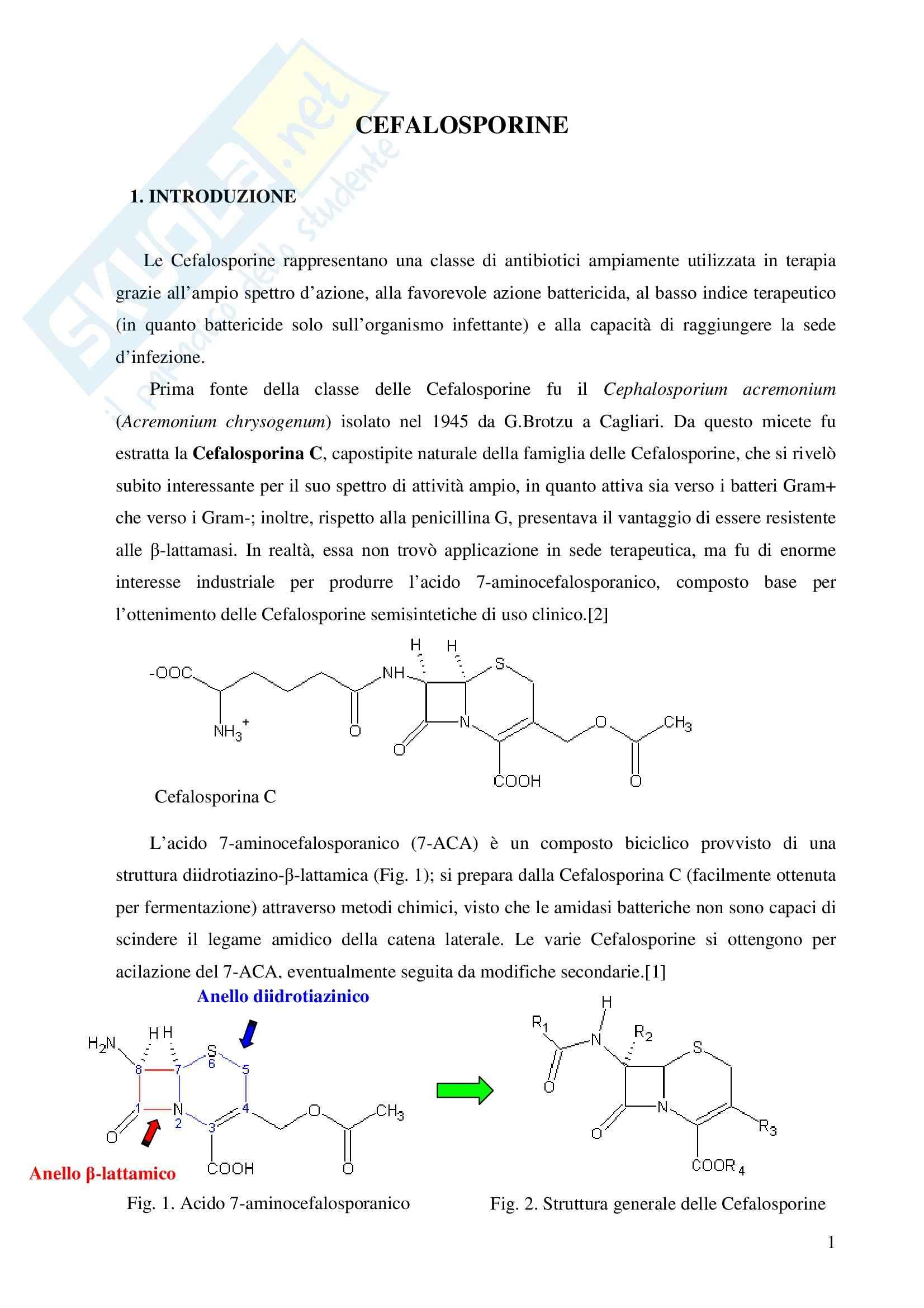 Chimica farmaceutica - le cefalosporine