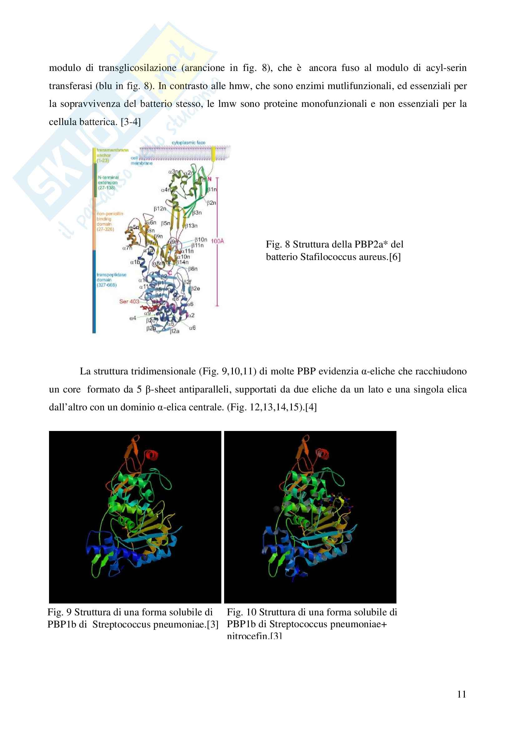 Chimica farmaceutica - le cefalosporine Pag. 11