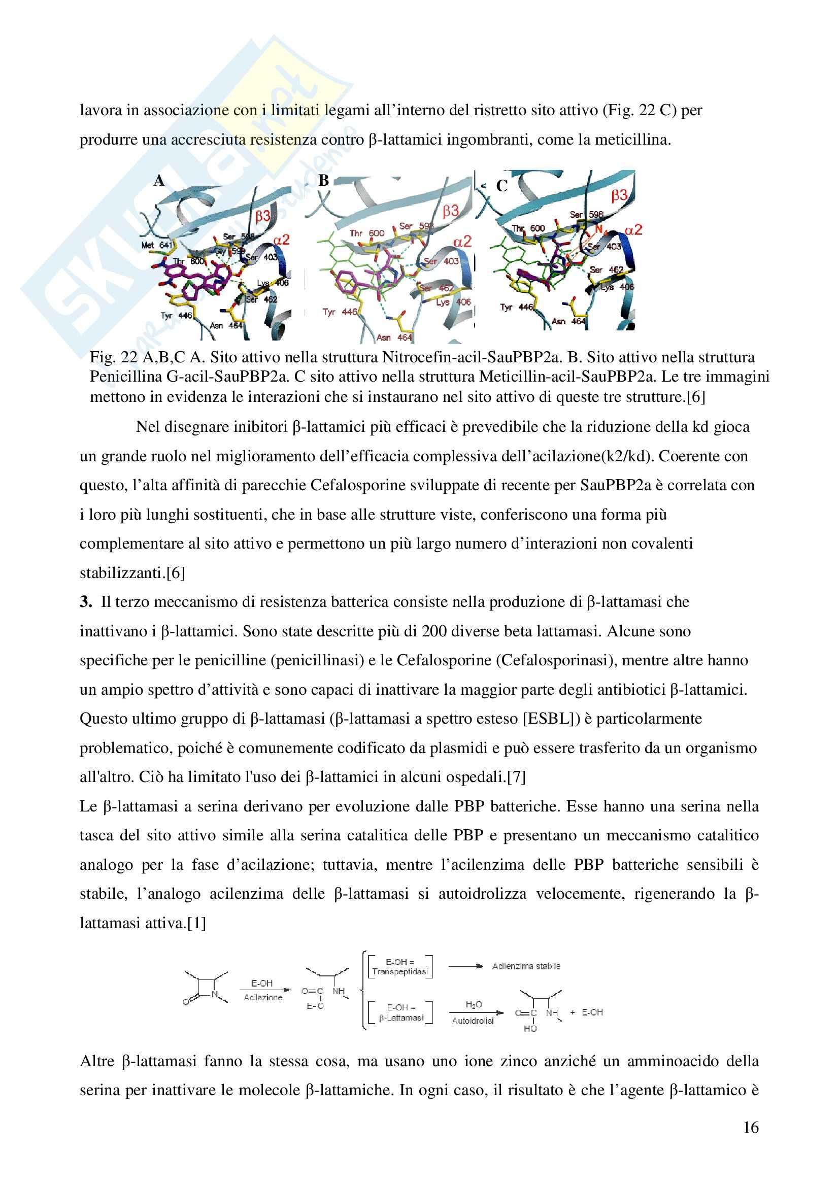 Chimica farmaceutica - le cefalosporine Pag. 16