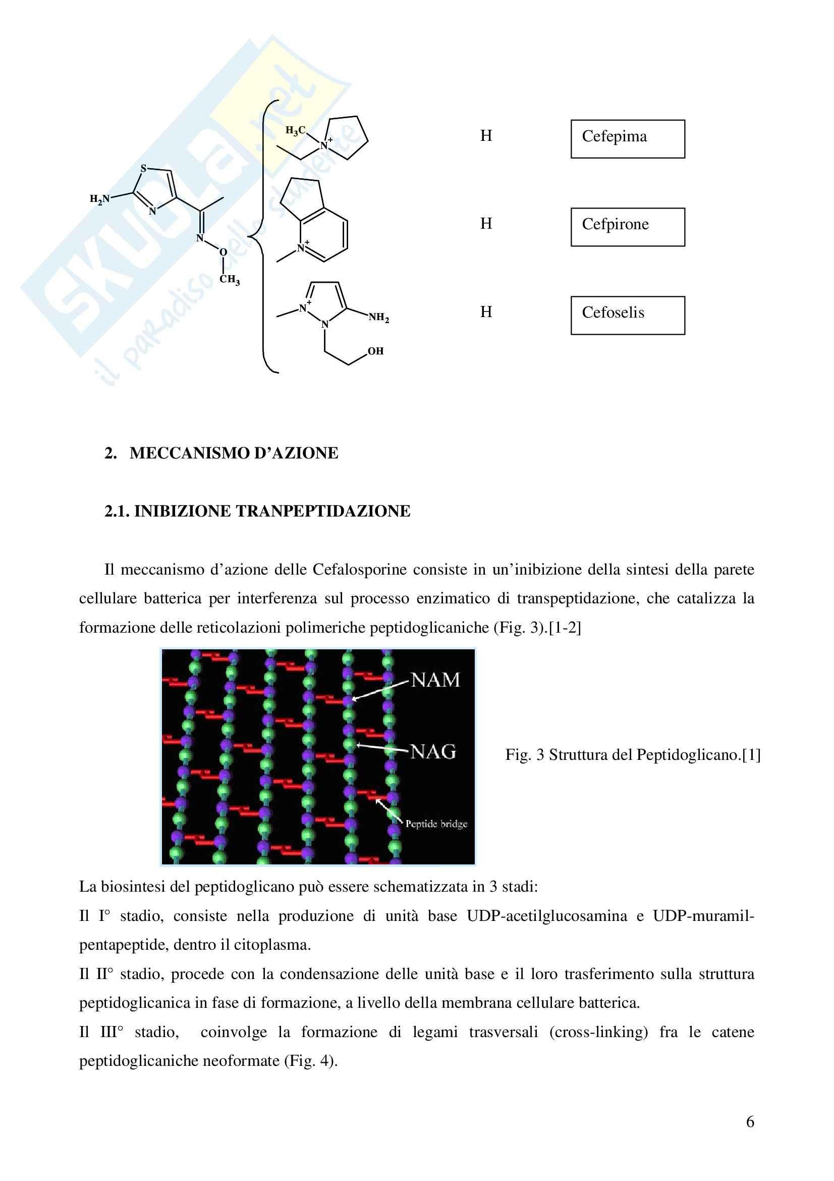 Chimica farmaceutica - le cefalosporine Pag. 6