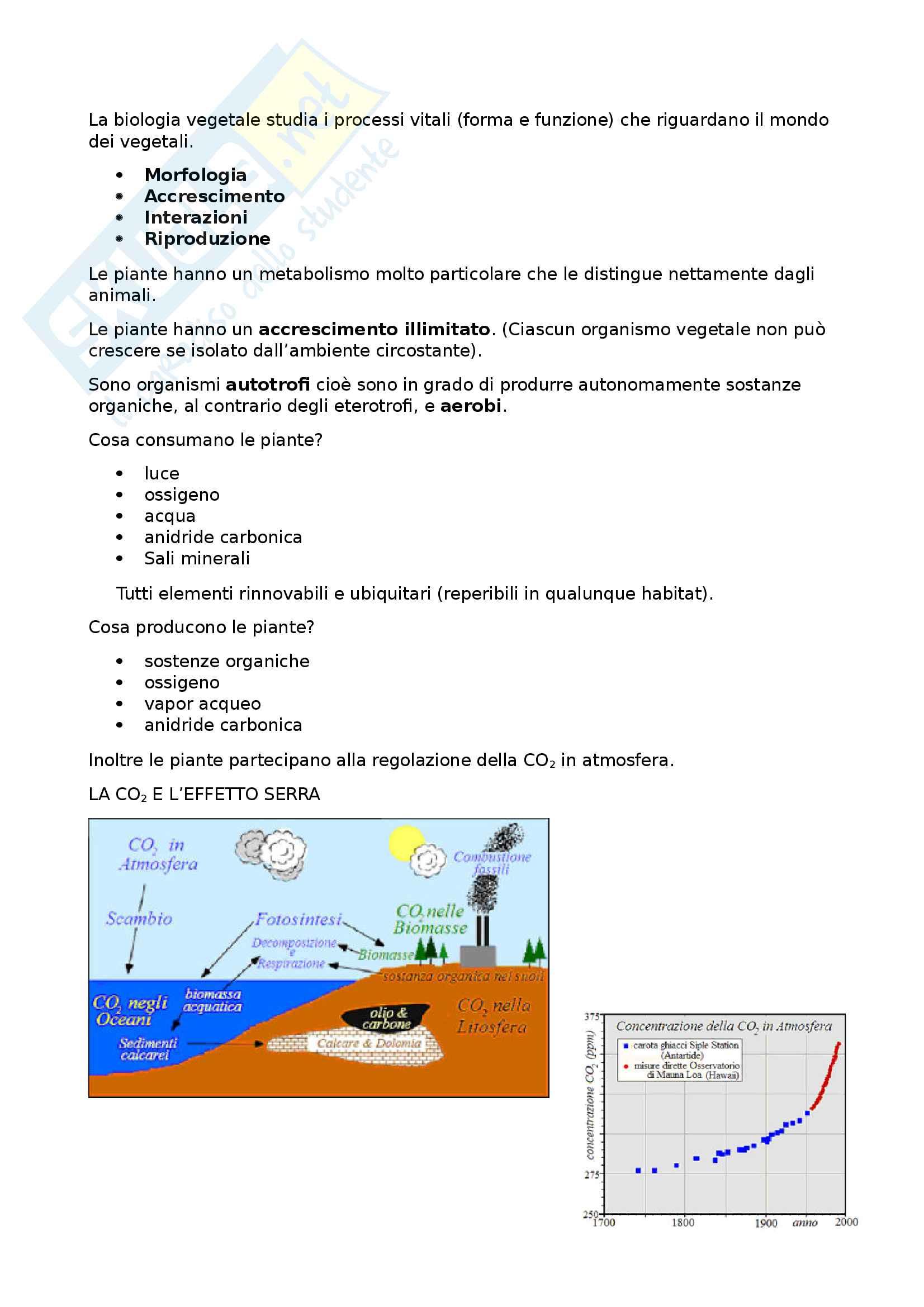 introduzione biologia vegetale e cladistica