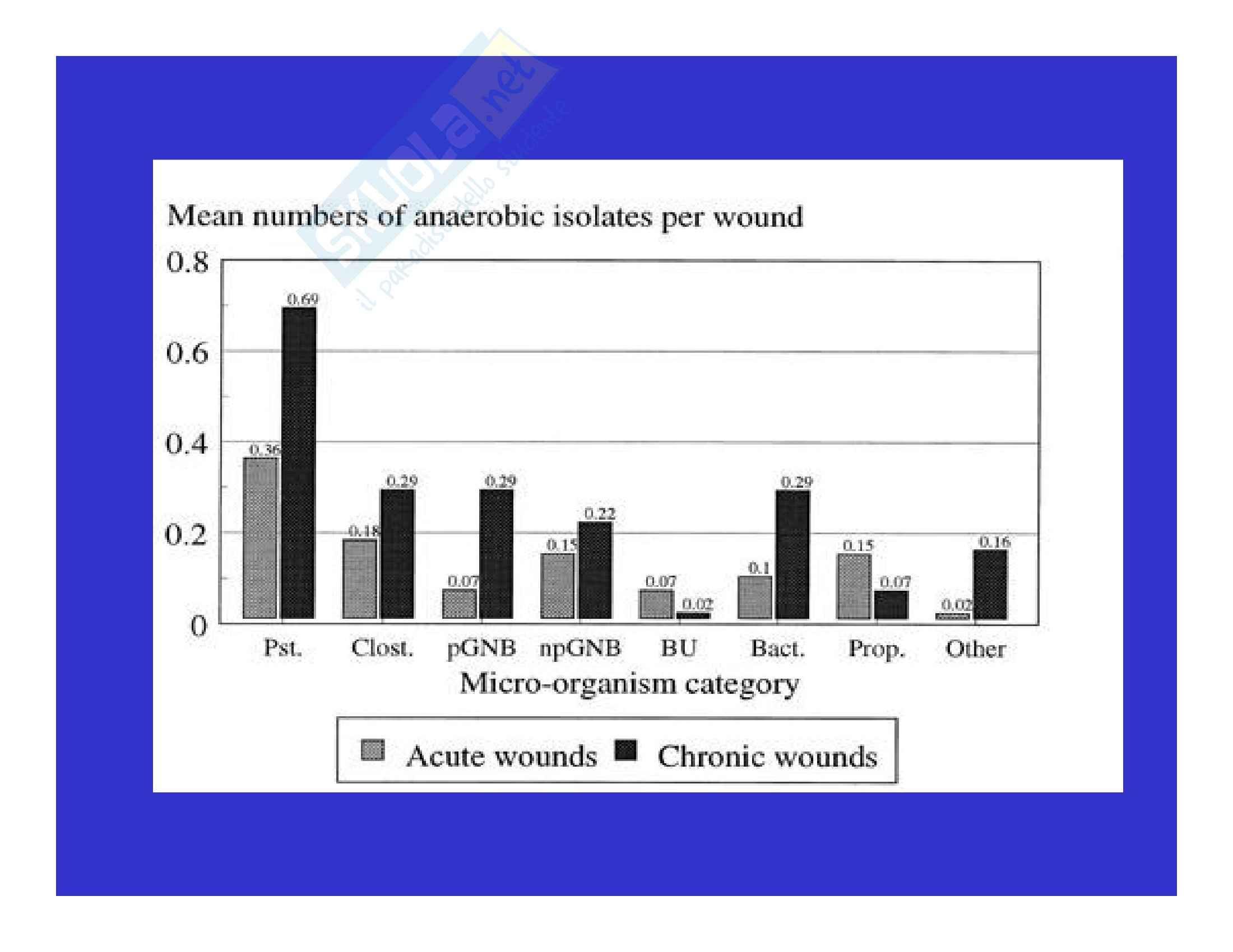 Microbiologia clinica - infezioni delle ferite Pag. 21