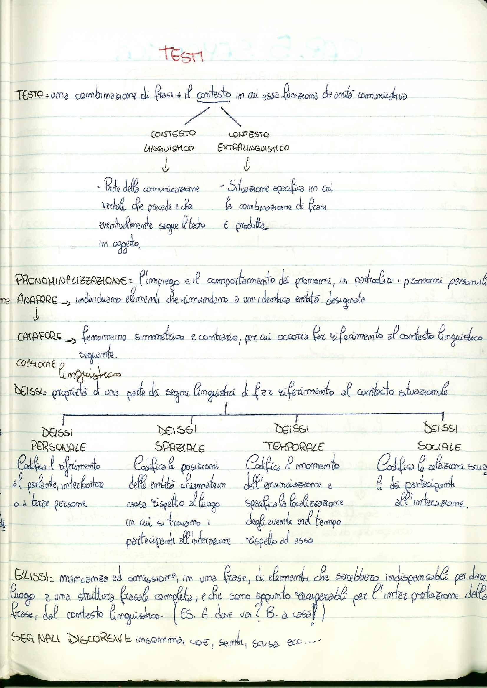 Riassunto esame Linguistica Generale, prof. De Angelis Pag. 41