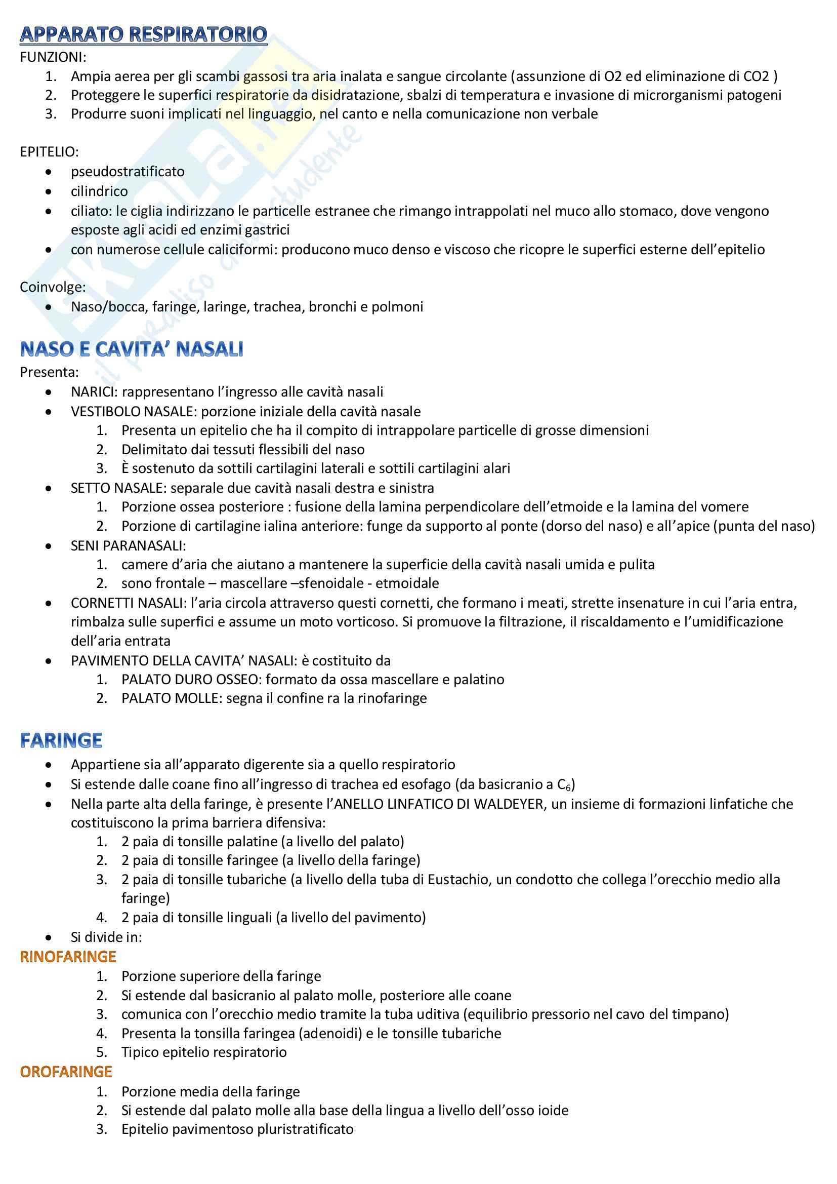 Scienze biomediche 1 - apparato respiratorio