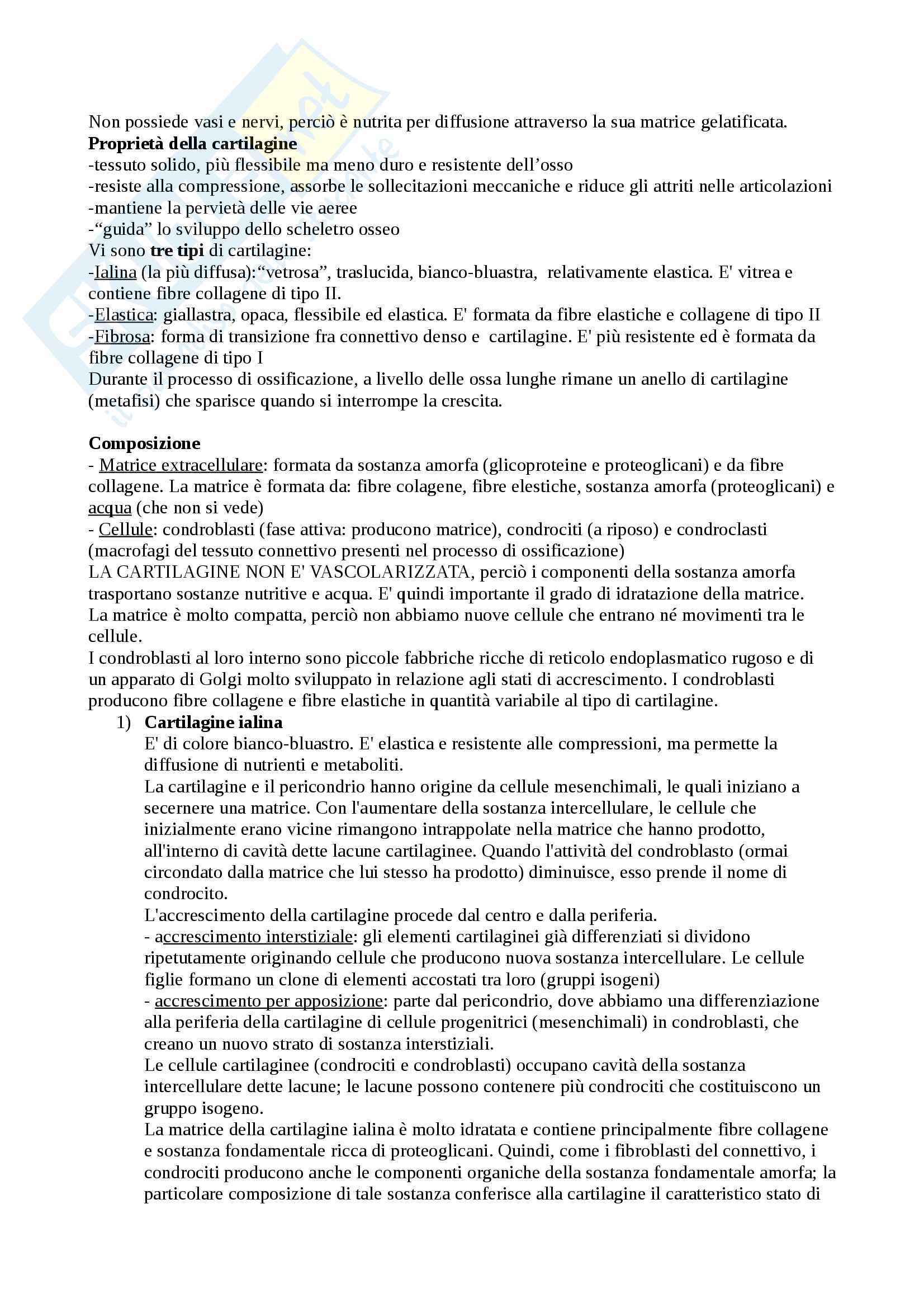 Appunti di Istologia Pag. 6