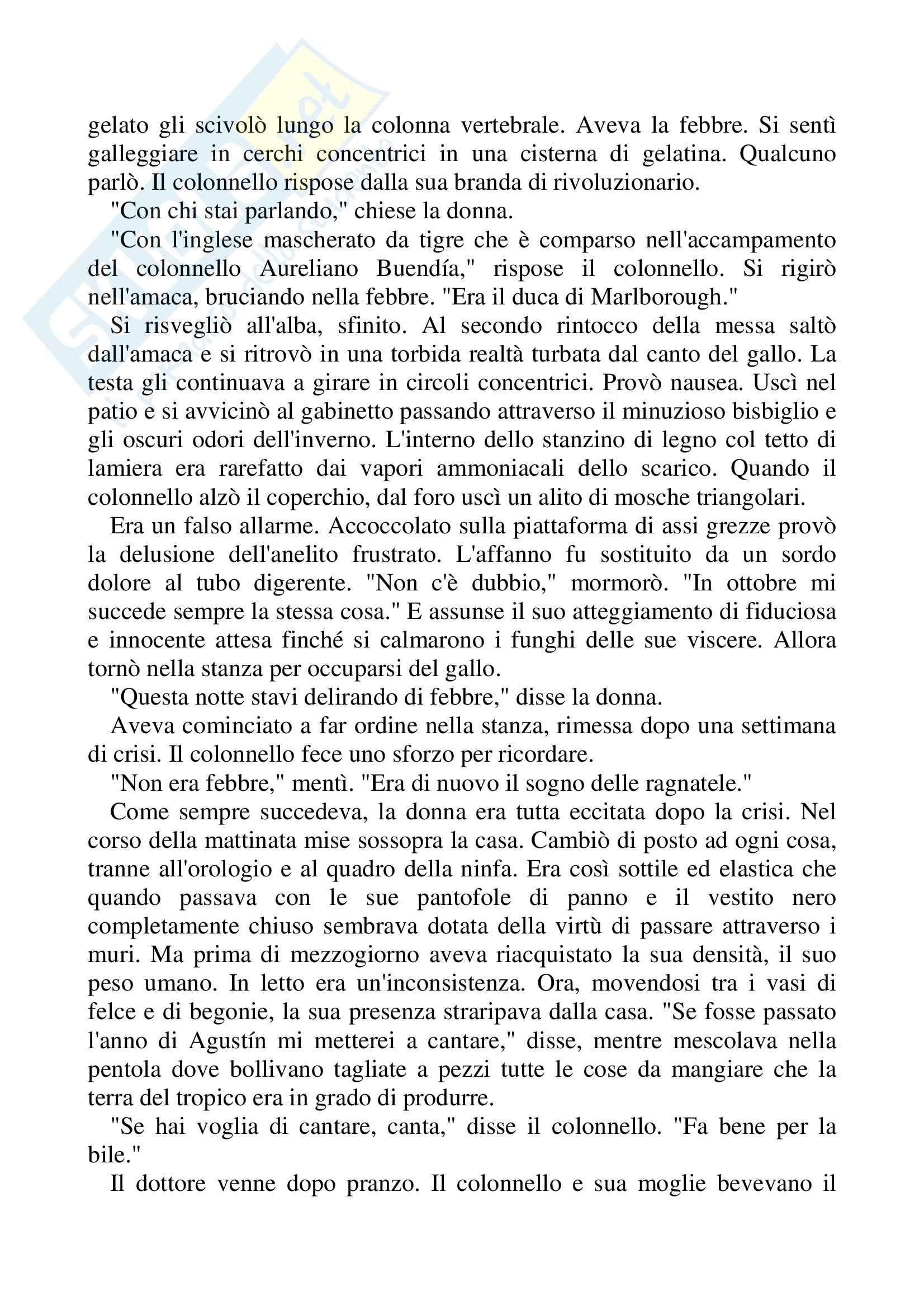 Riassunto esame Lingua Spagnola, prof. Gomez, libro consigliato Nessuno scrive al colonnello, Gabriel Garcàa Marquez Pag. 16