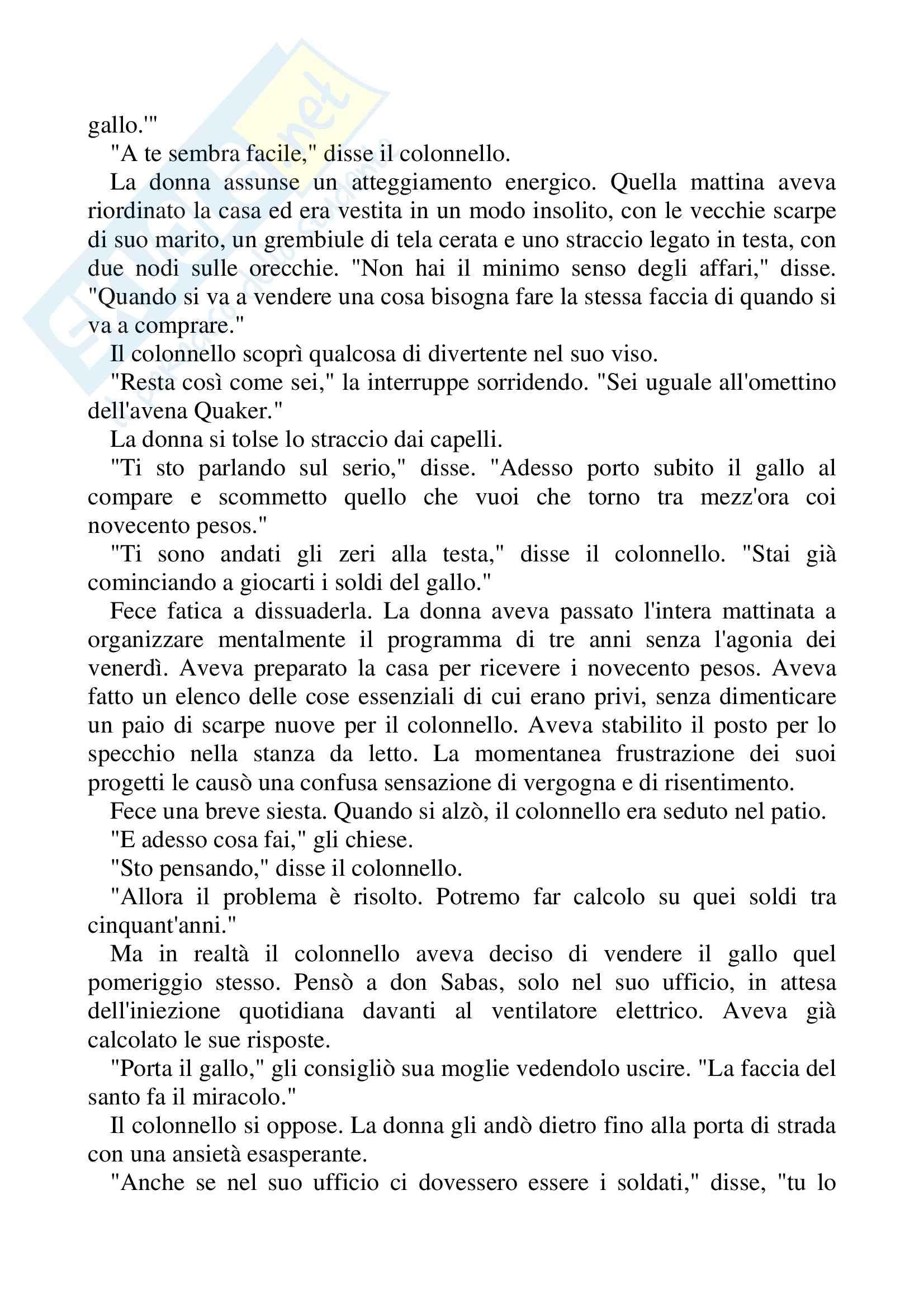 Riassunto esame Lingua Spagnola, prof. Gomez, libro consigliato Nessuno scrive al colonnello, Gabriel Garcàa Marquez Pag. 41