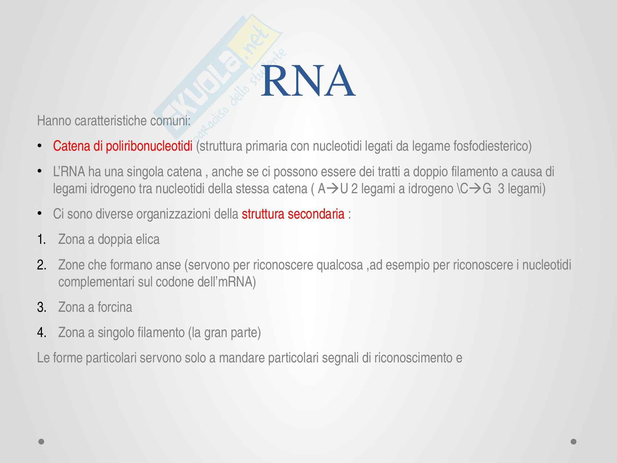 DNA e RNA, Biochimica Pag. 26