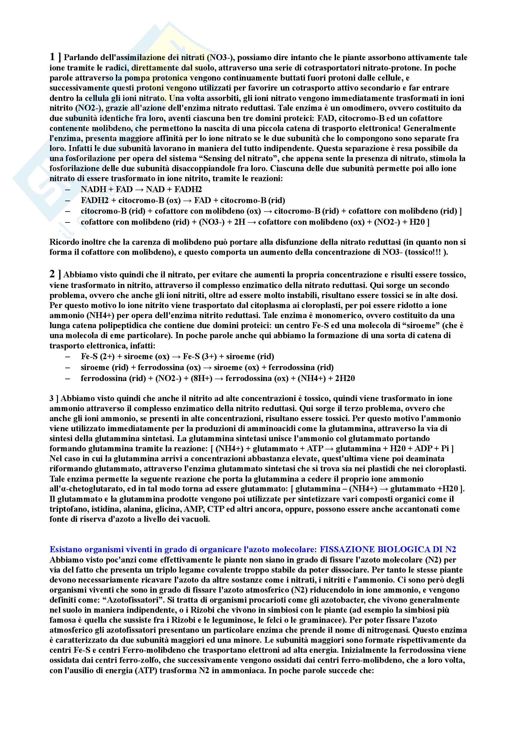 Riassunti di Fisiologia vegetale Pag. 56
