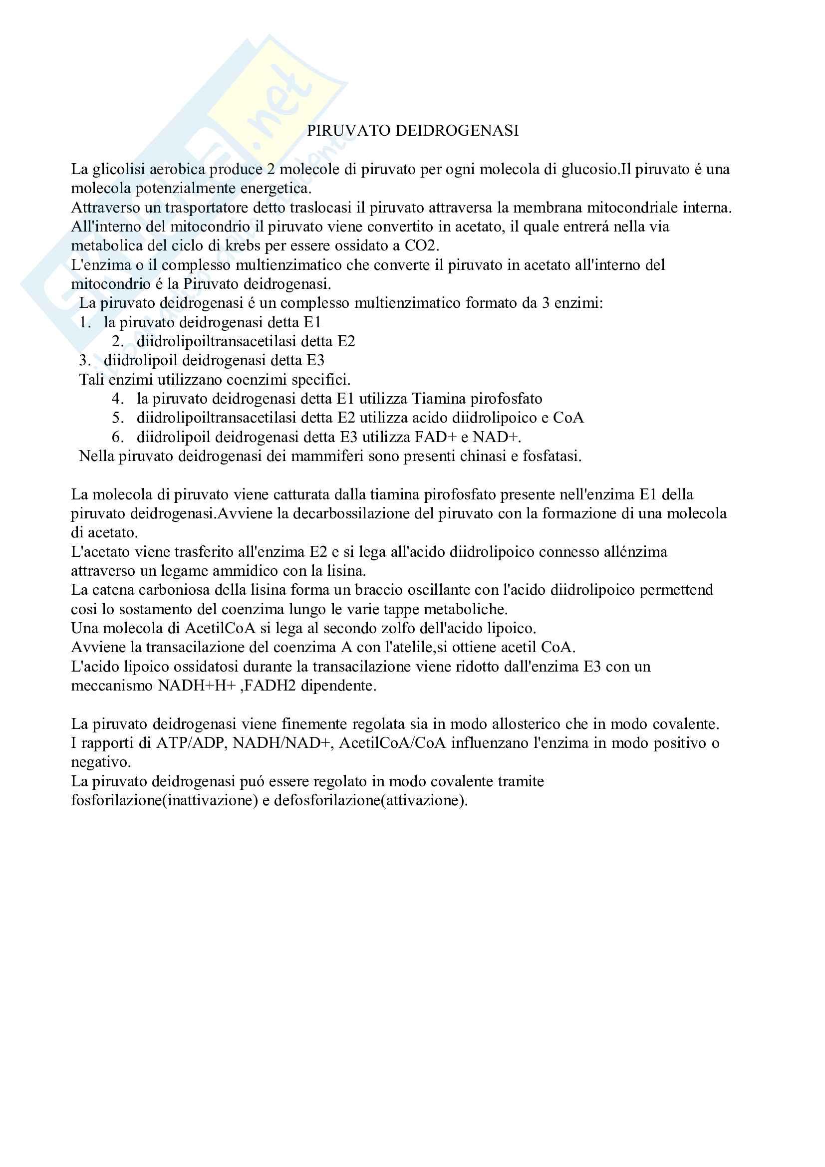 Biochimica Matabolica e funzionale Pag. 6