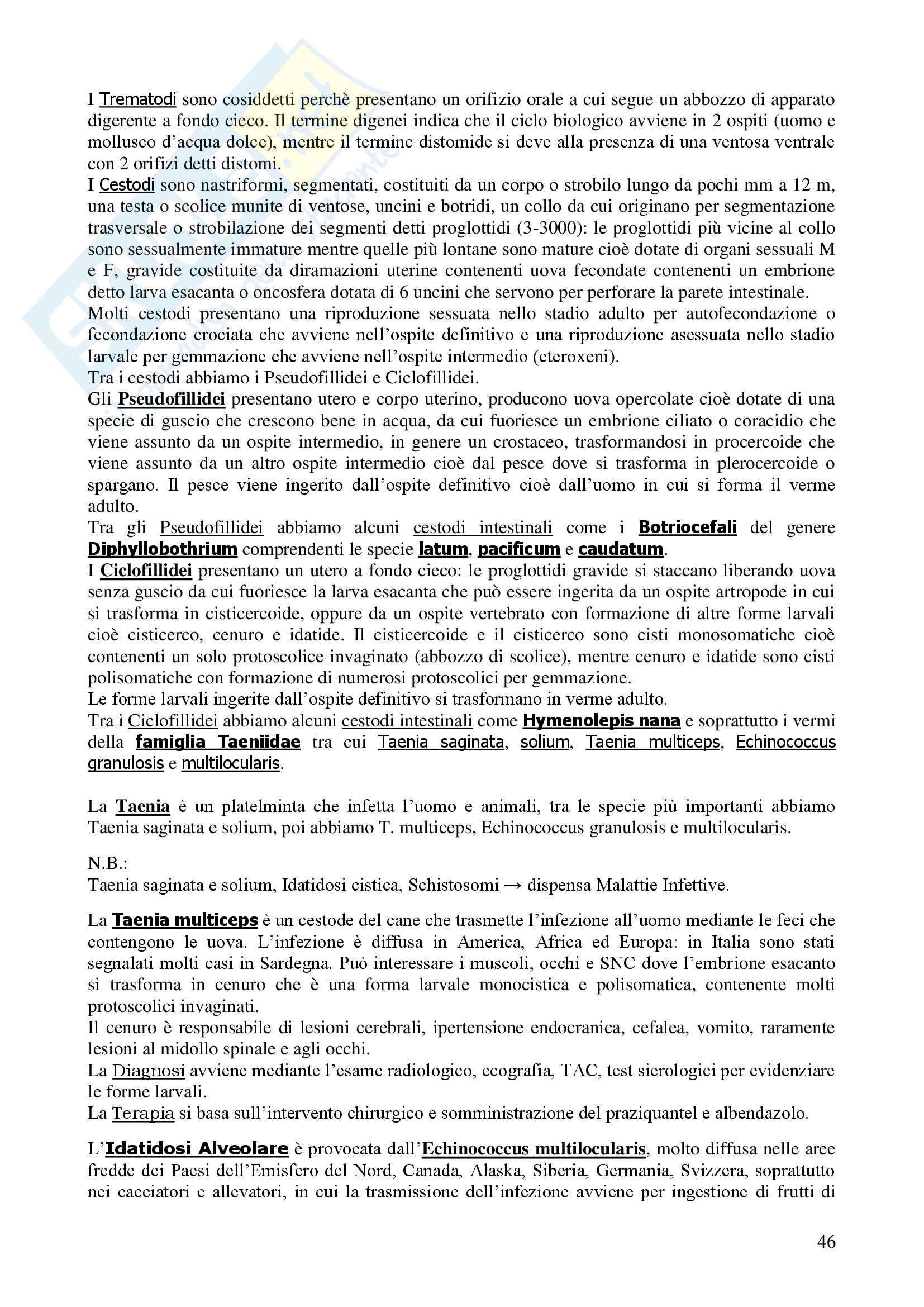 Microbiologia I e II - Corso completo Pag. 46