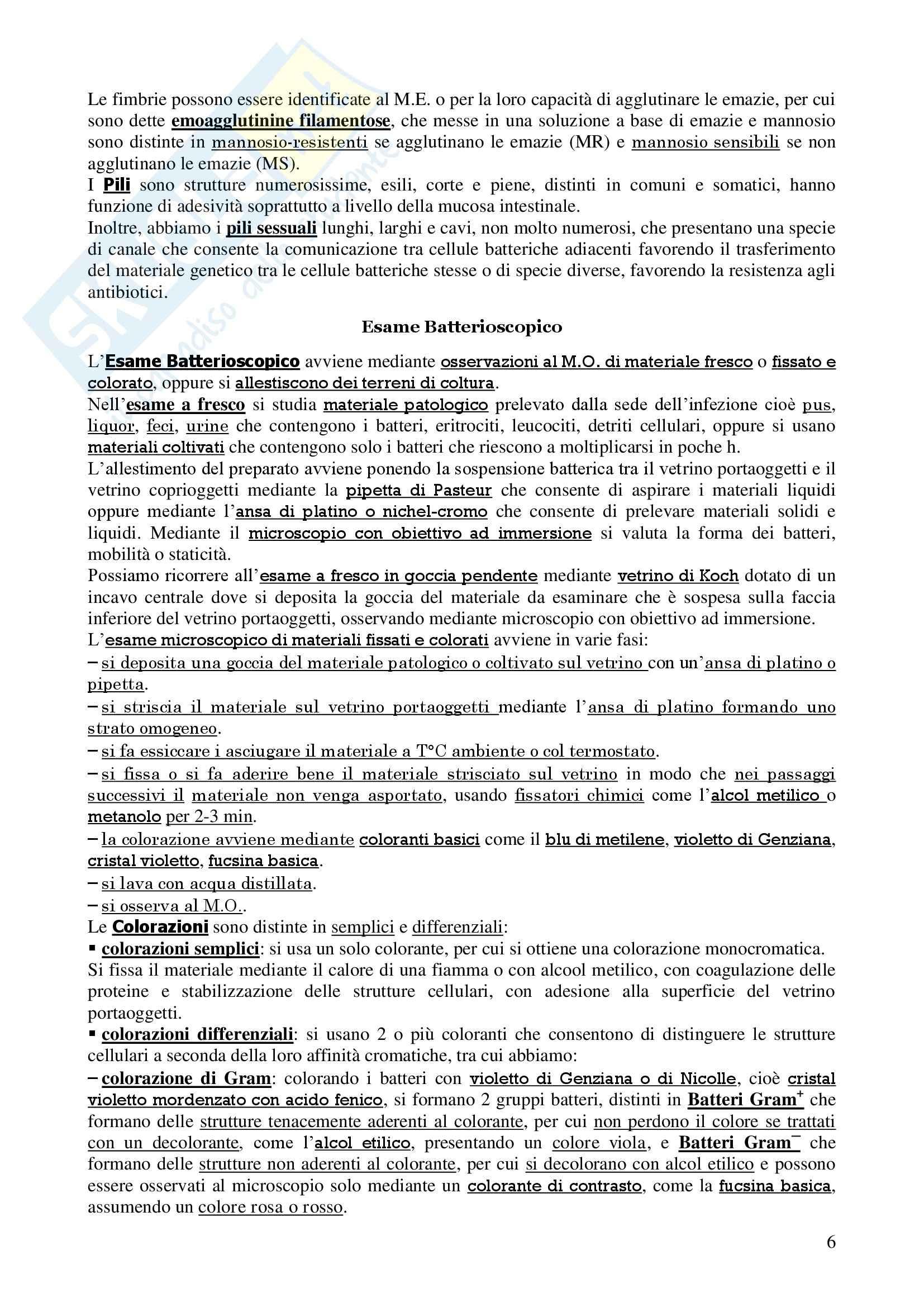 Microbiologia I e II - Corso completo Pag. 6
